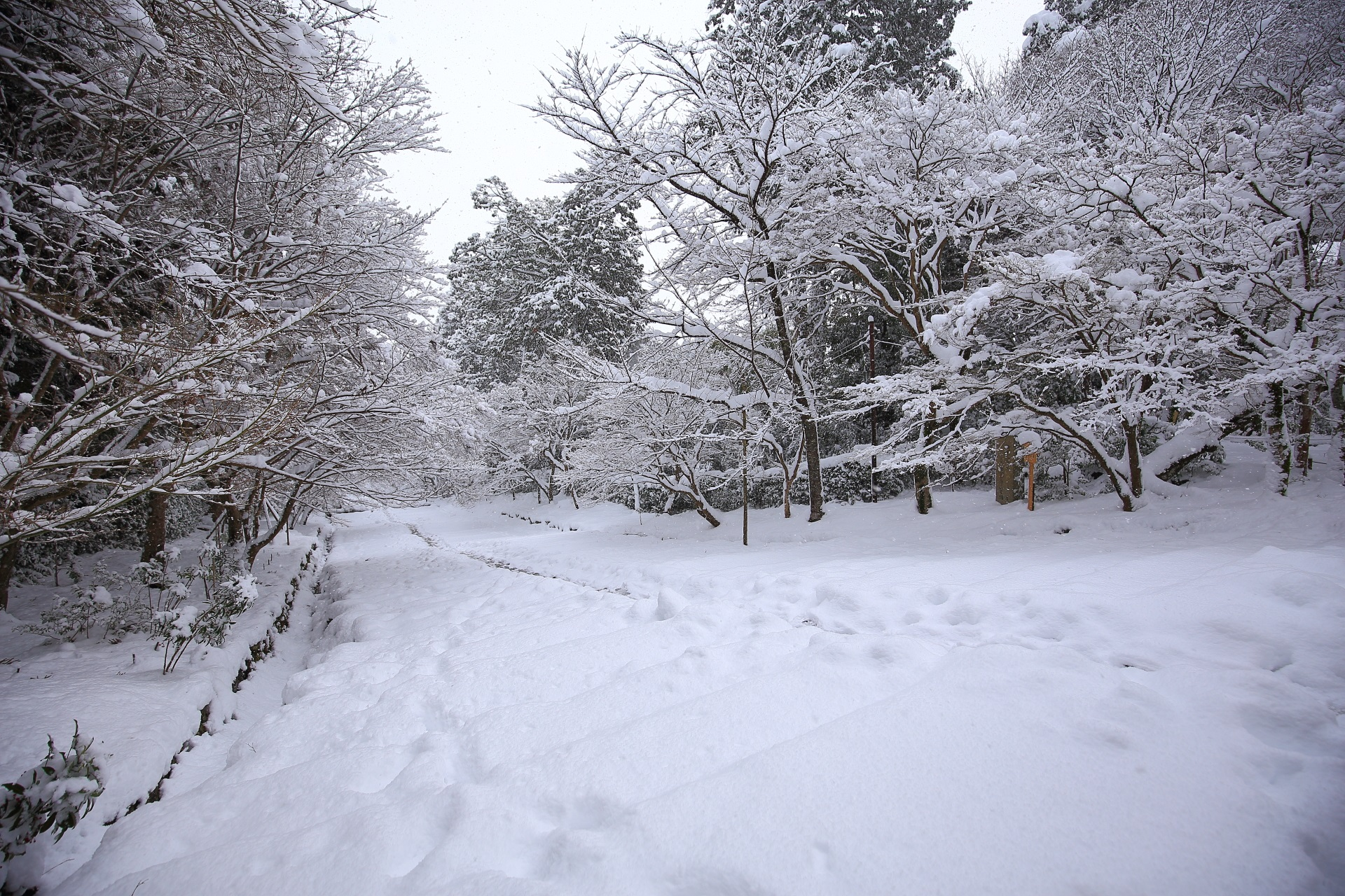 二尊院のふかふかの雪景色