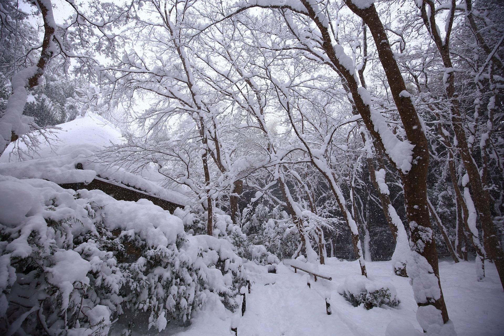 草庵の深い雪景色