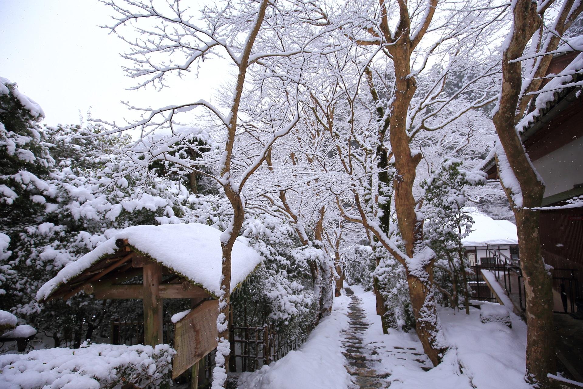 石段の上から見下ろした雪景色