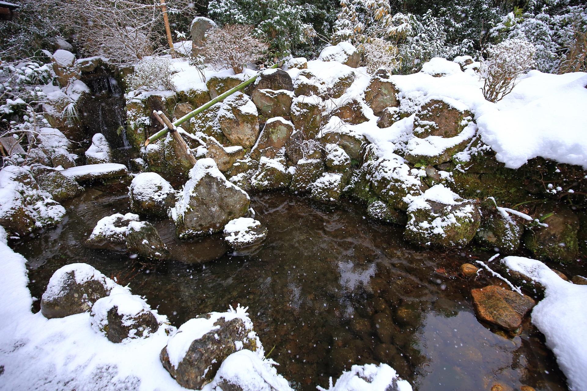 宝泉院の客殿入口の冬景色