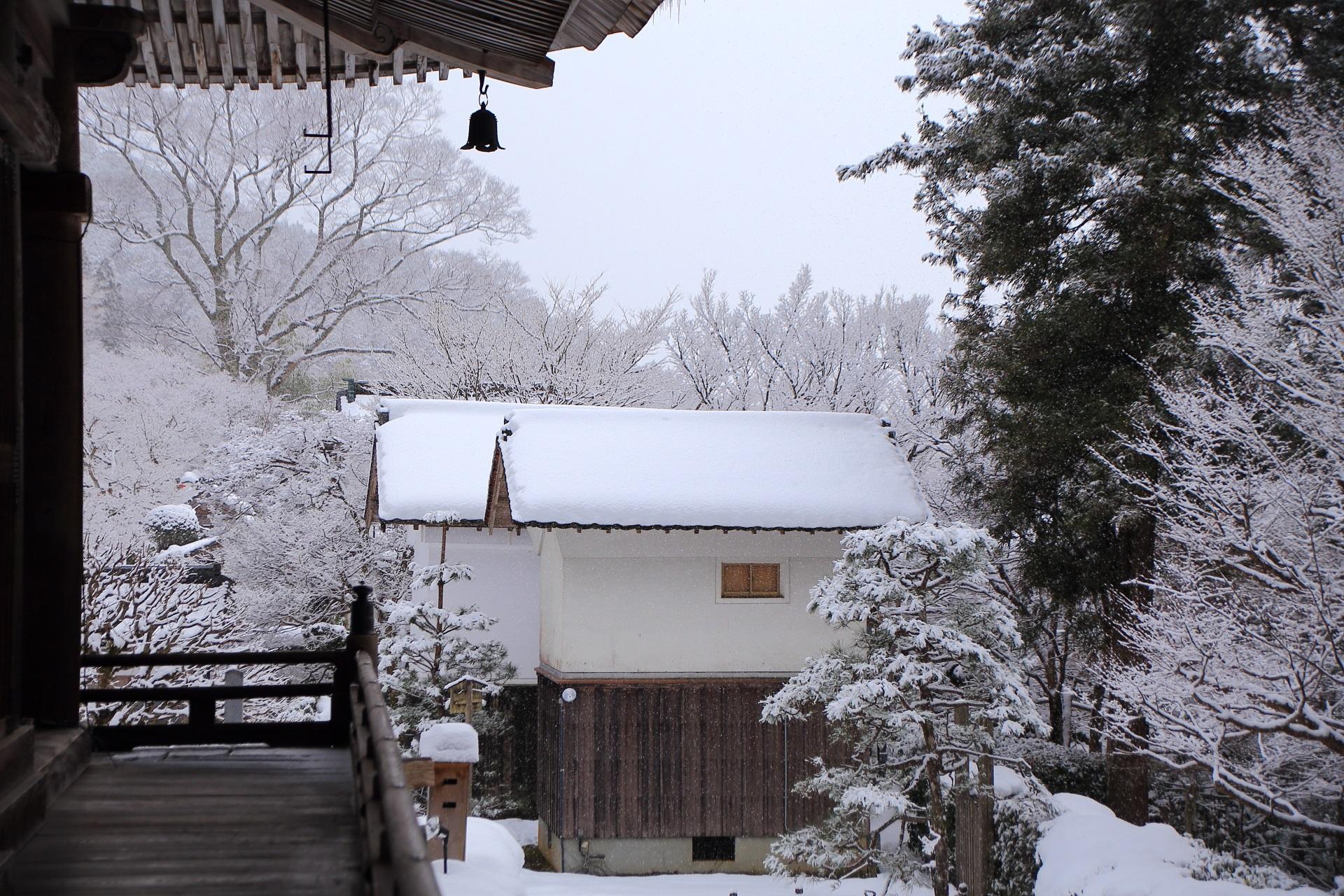 屋根や木に綺麗に雪が積もった冬の勝林院