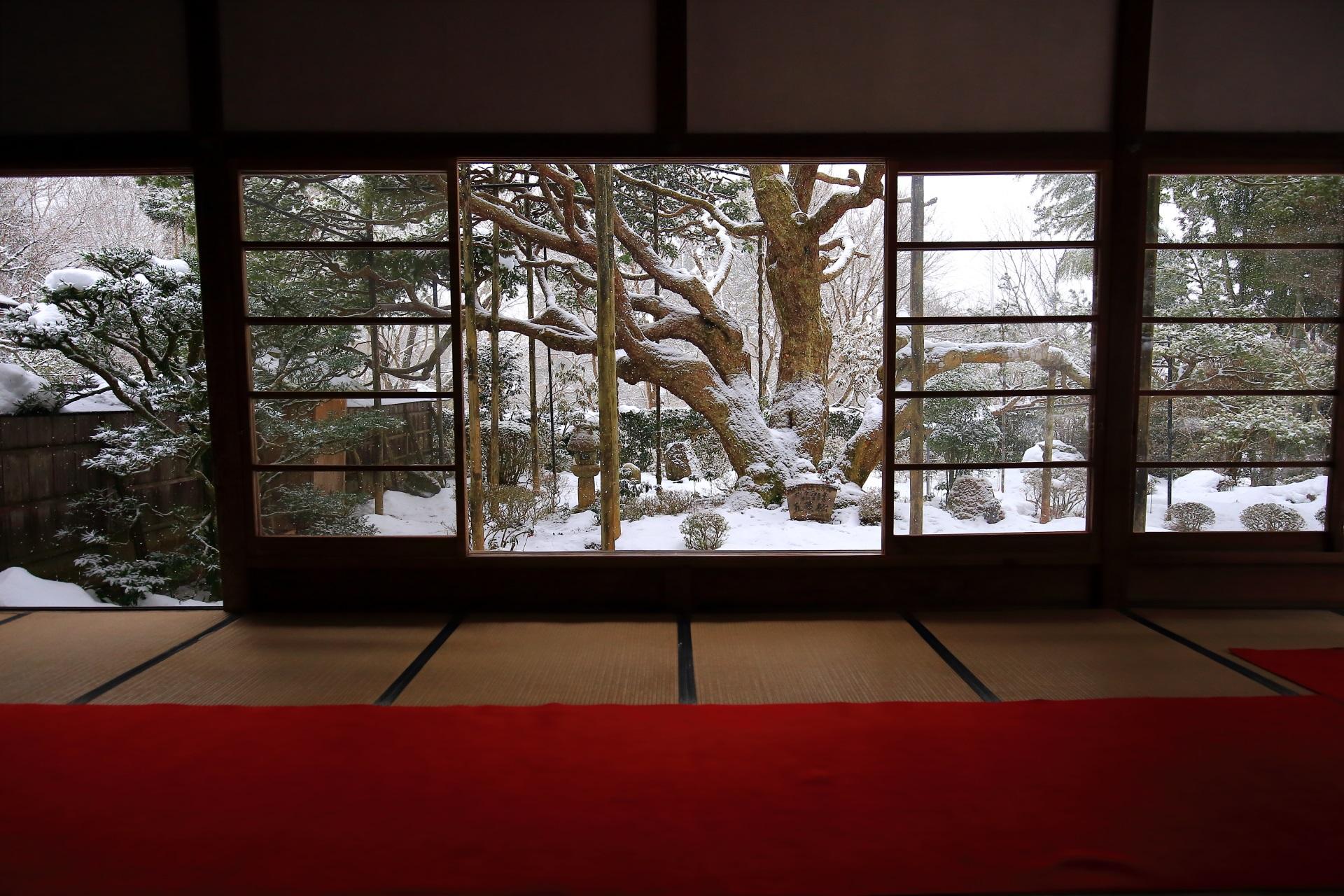 美しい冬の大原宝泉院の額縁の庭
