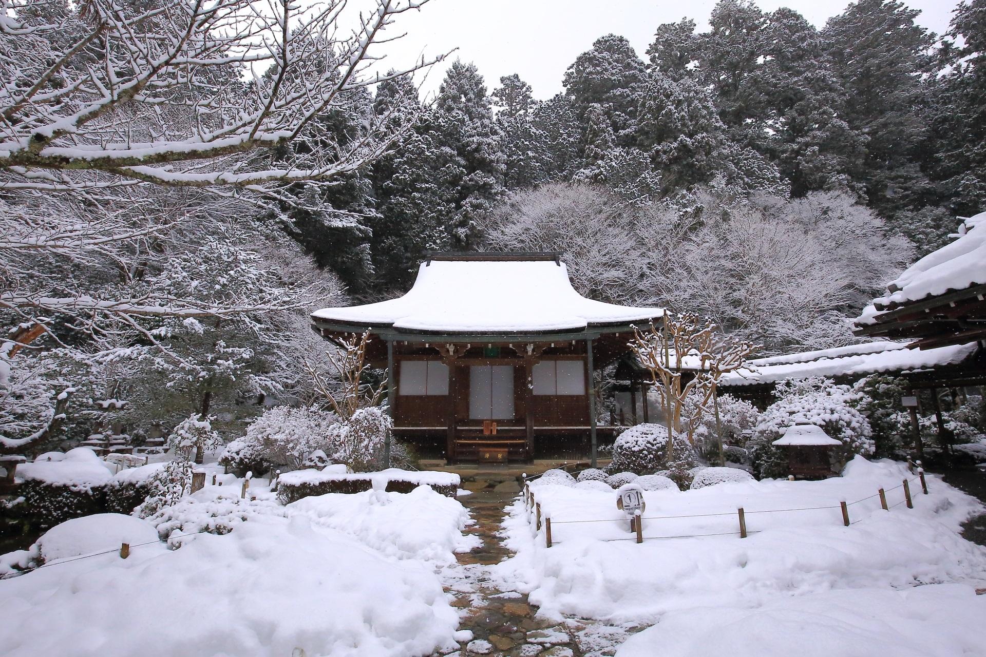 山門前から眺めた雪の本堂