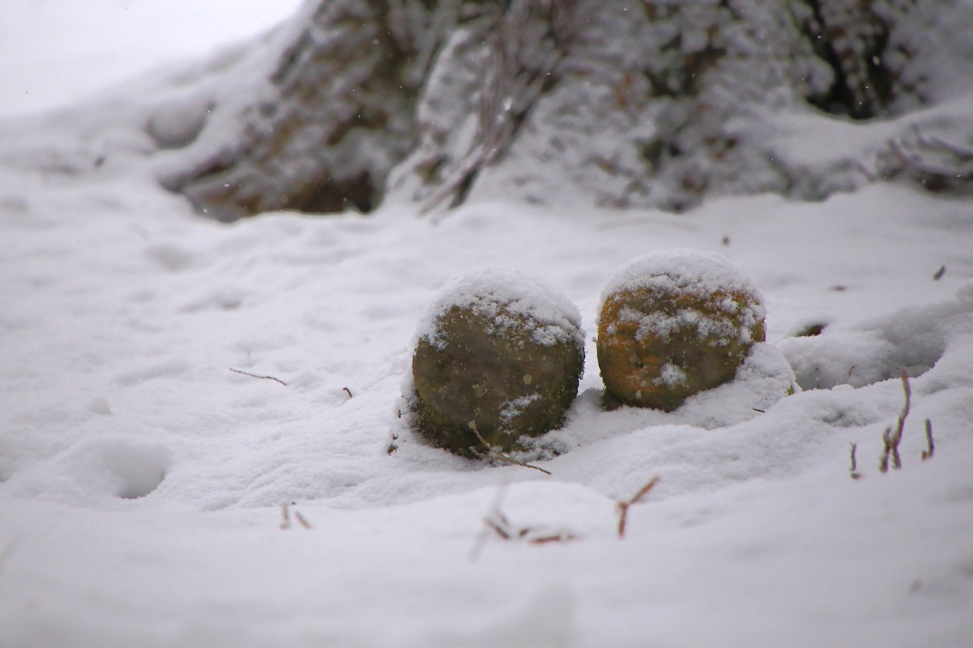 ふわふわの雪に覆われた三千院のわらべ地蔵さん