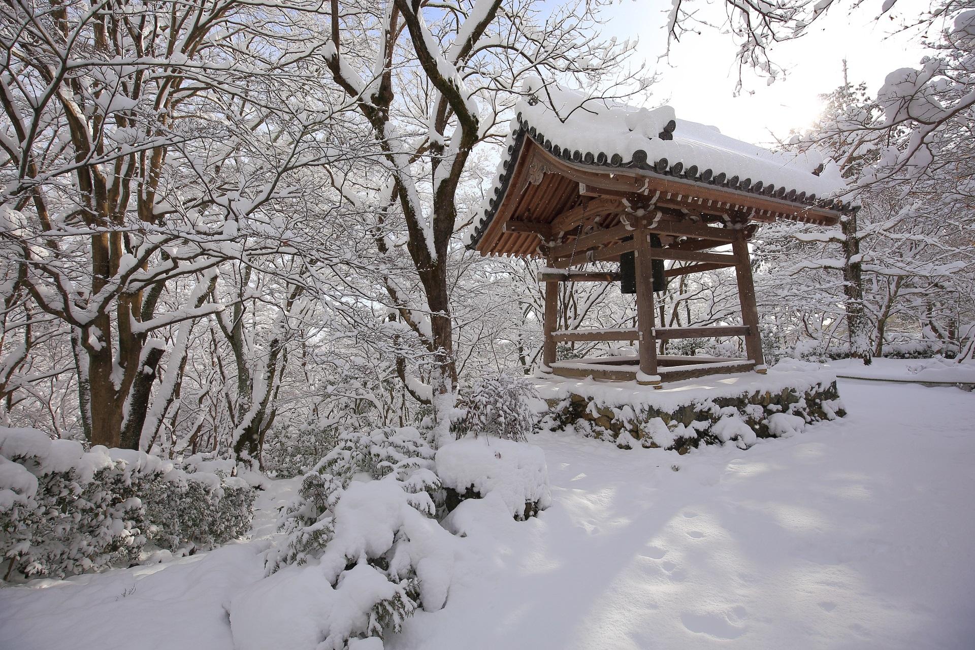 木に積もった雪が素晴らしい常寂光寺の冬景色