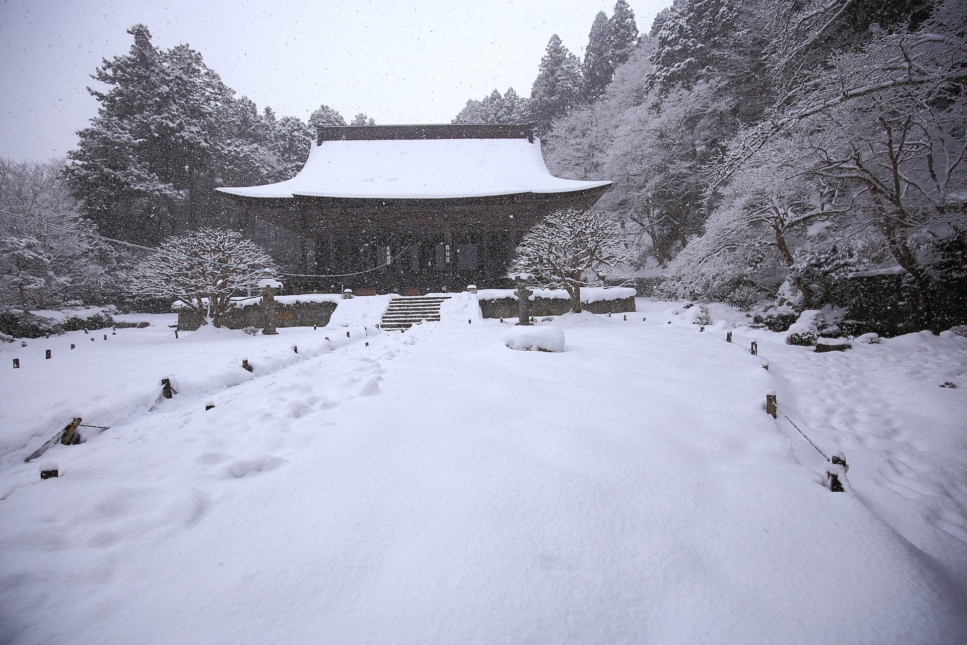 雪が激しく降る冬の勝林院