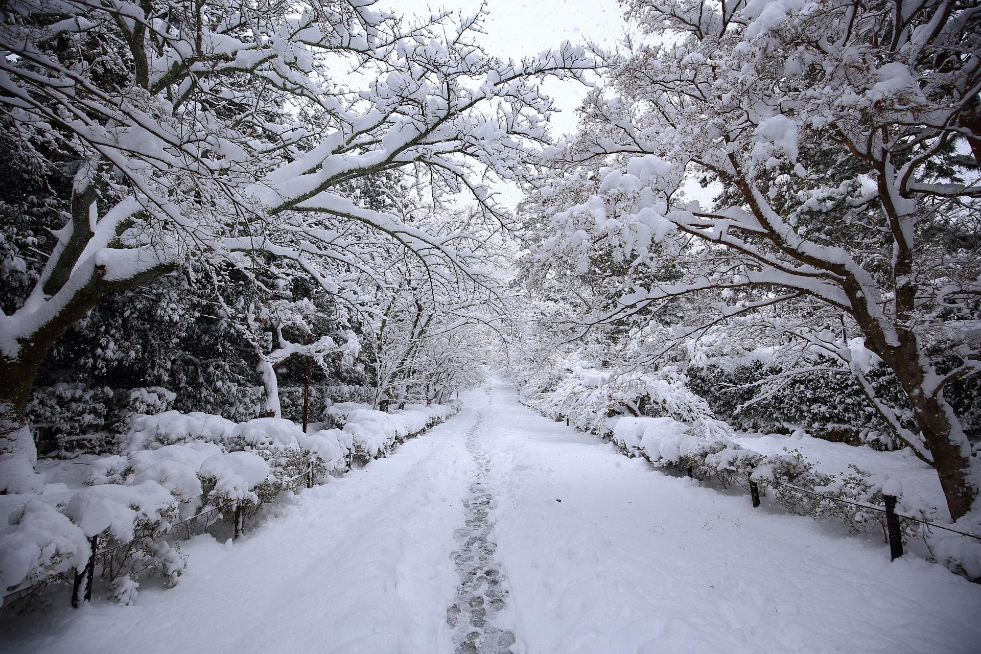 二尊院の紅葉の馬場の雪景色