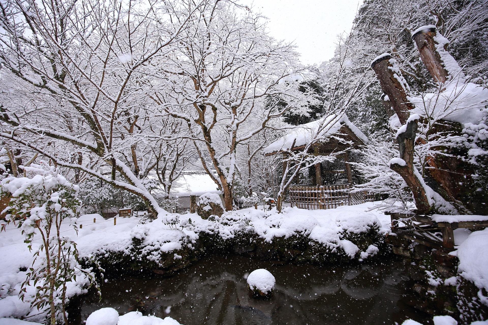 雪につつまれた汀の池(みぎわのいけ)