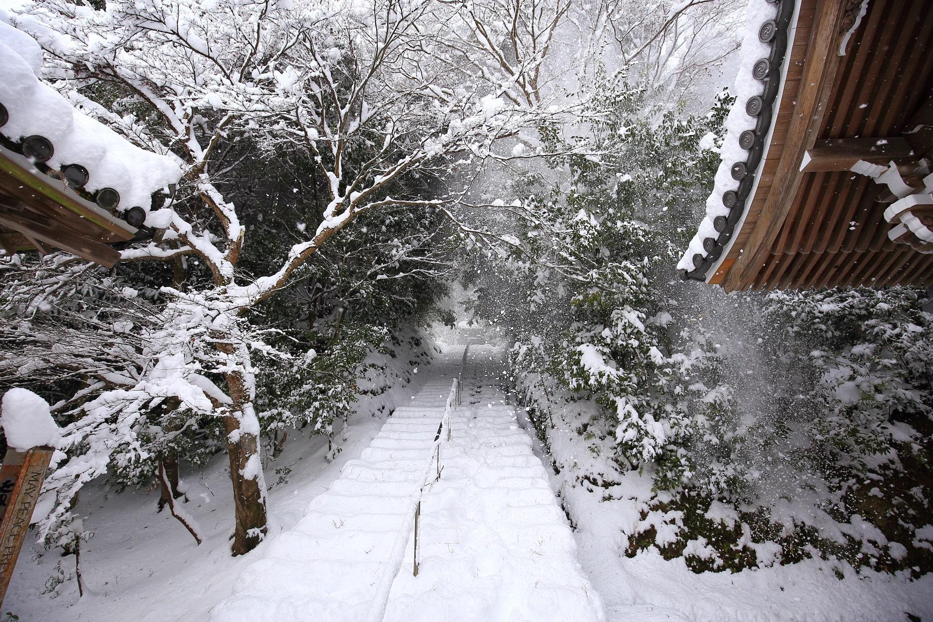 法然上人廟に続く石段の雪景色