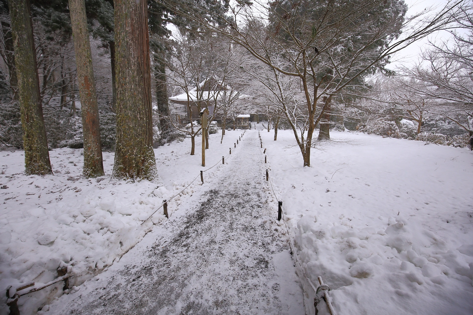 三千院の宸殿から眺めた一面の雪景色
