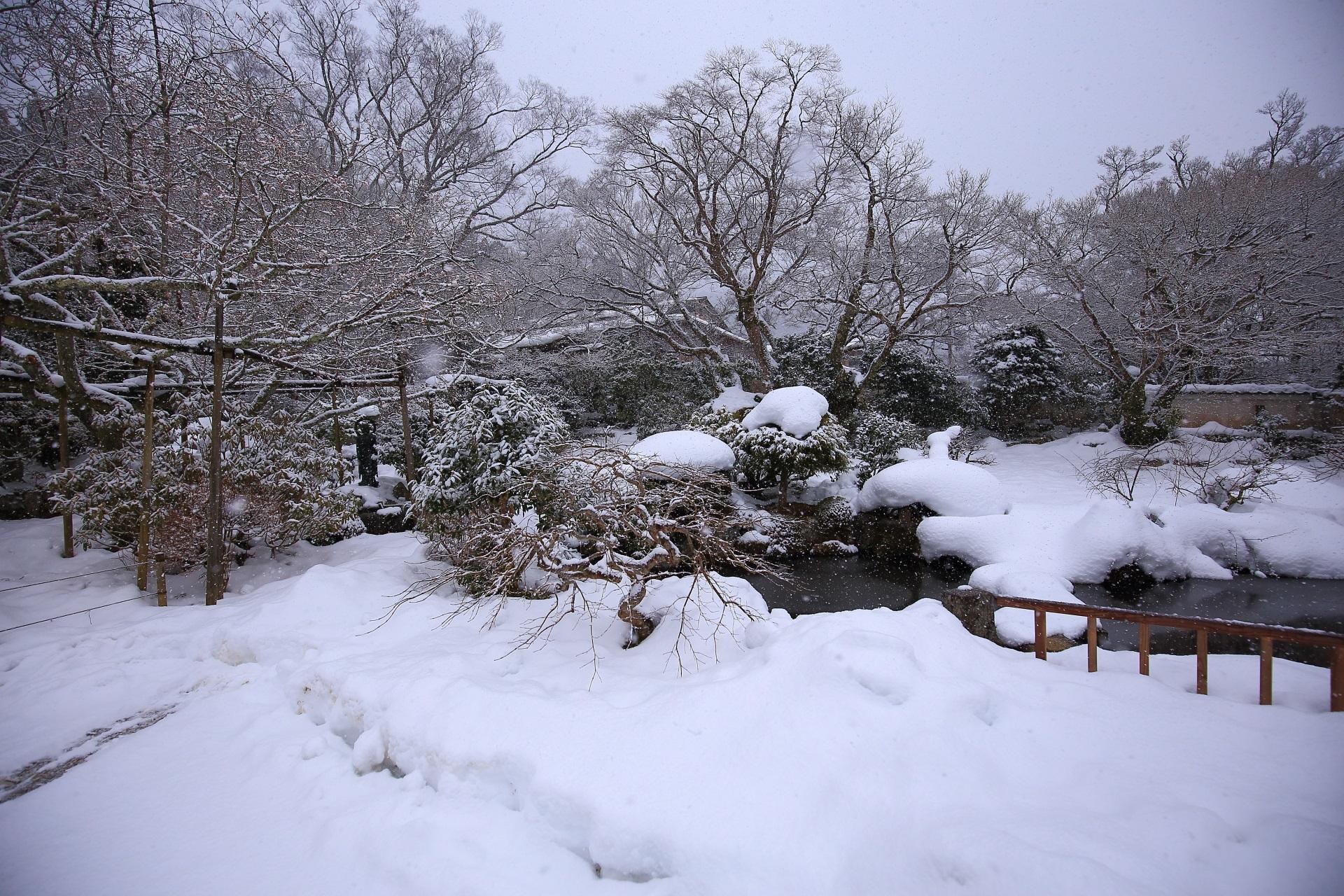冬の実光院と雪の池