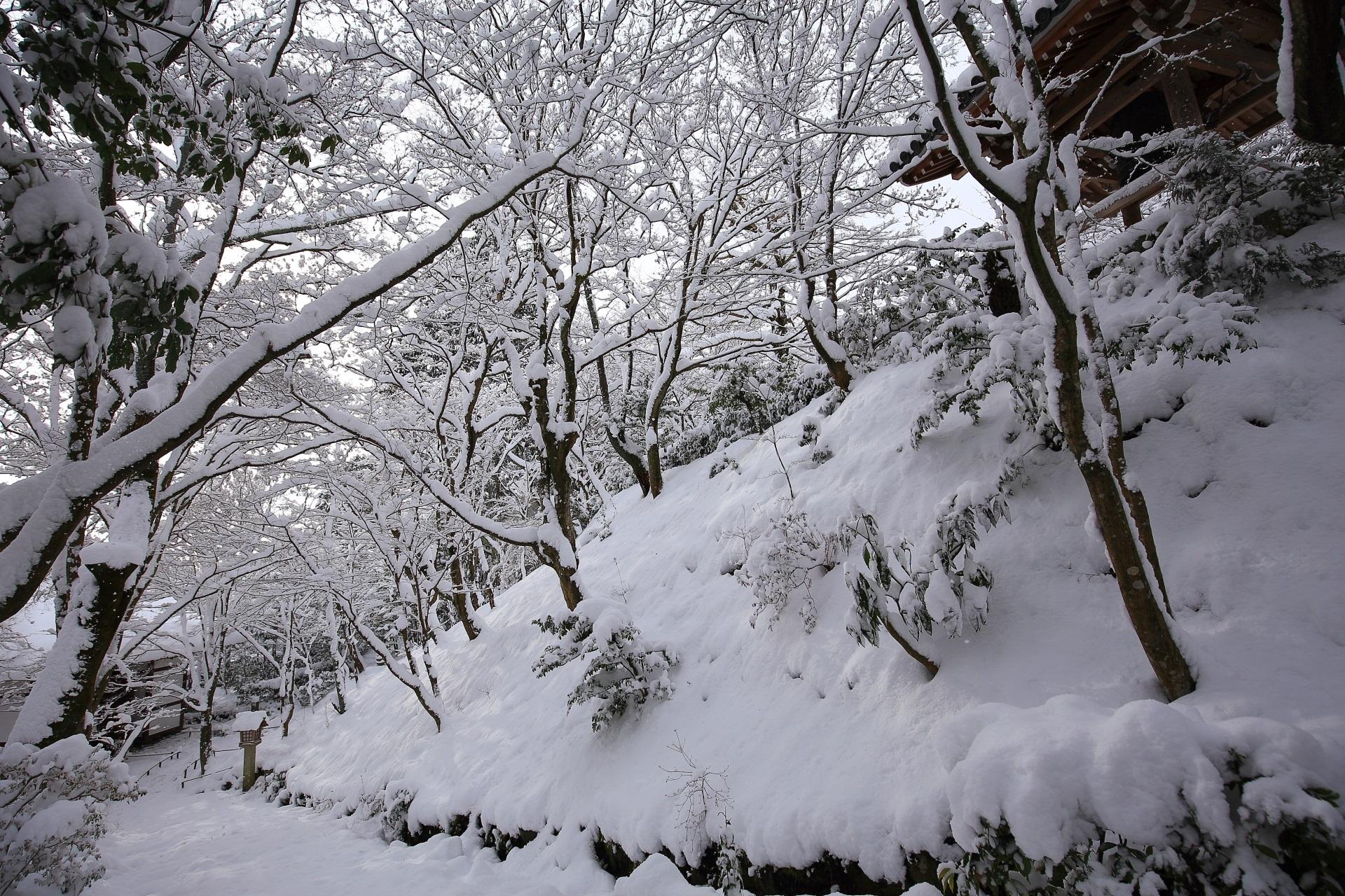 常寂光寺の素晴らしい雪景色