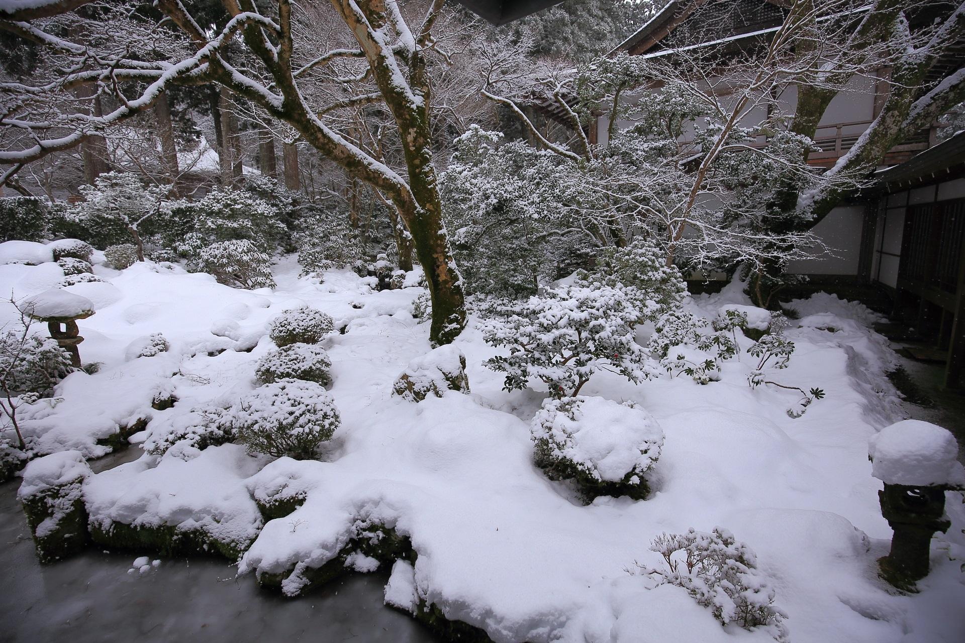 ふかふかの雪が積もった三千院の庭園