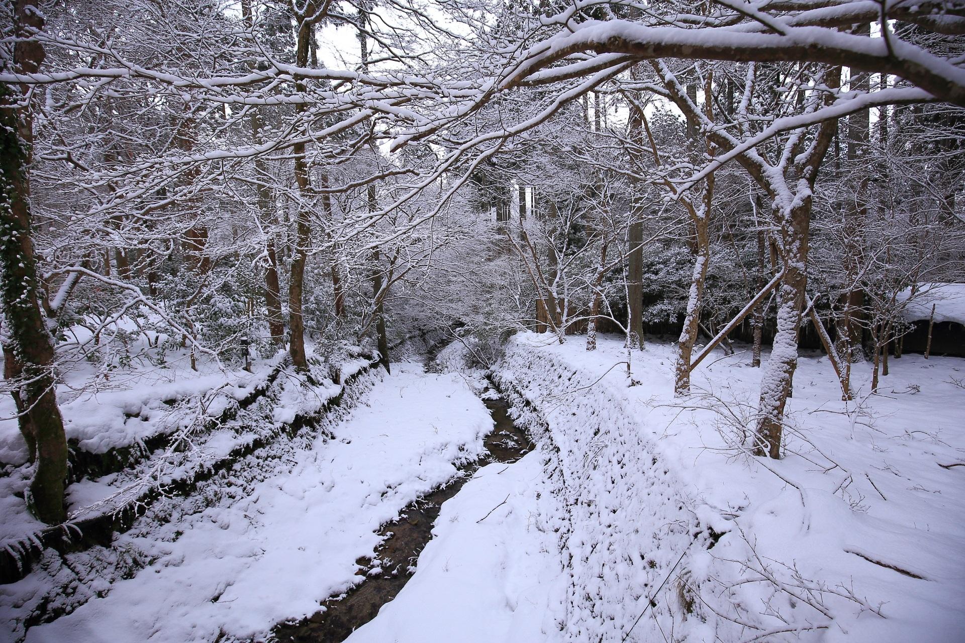 三千院を流れる律川の雪景色