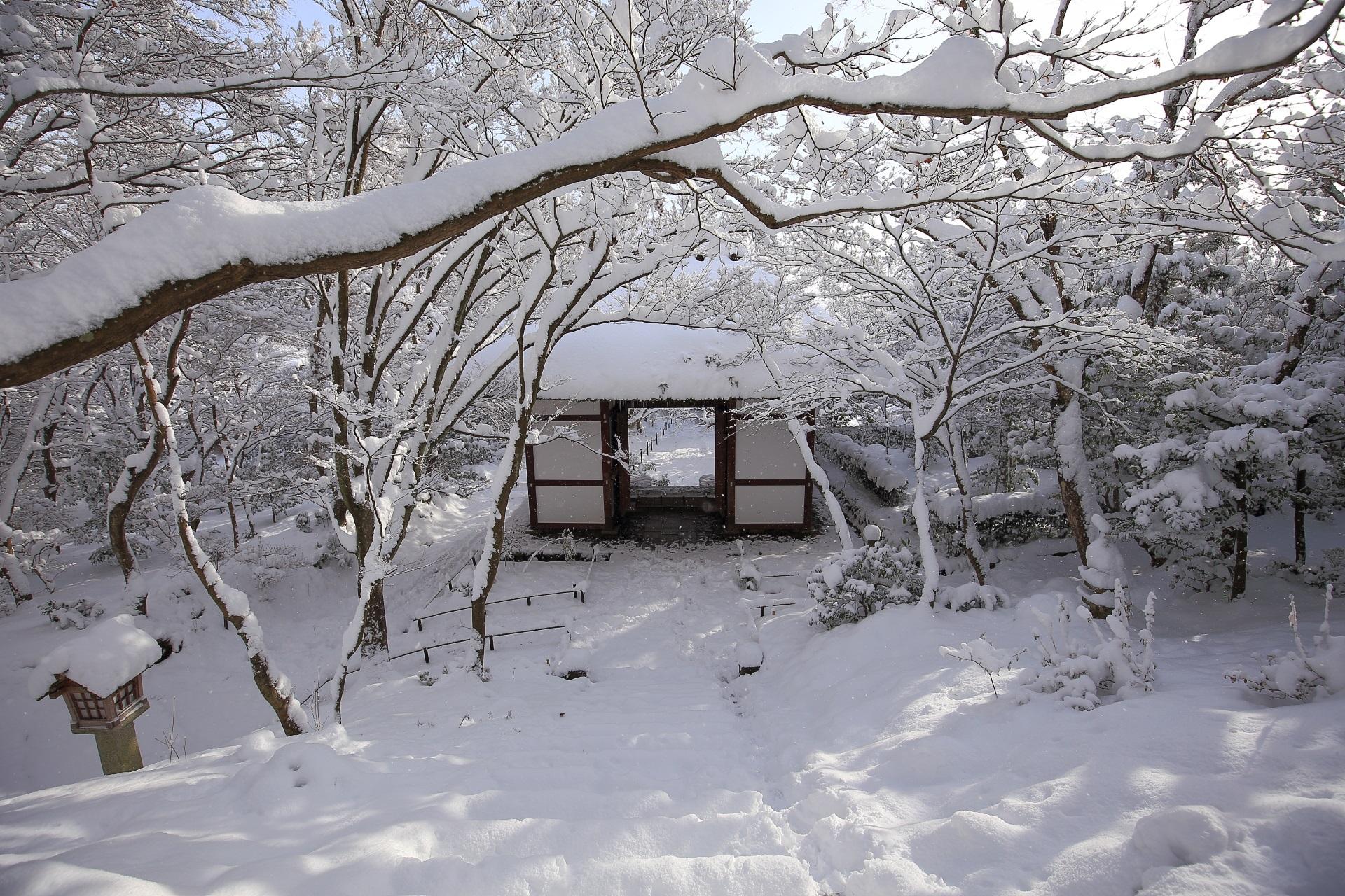 石段の中段から眺めた雪の山門