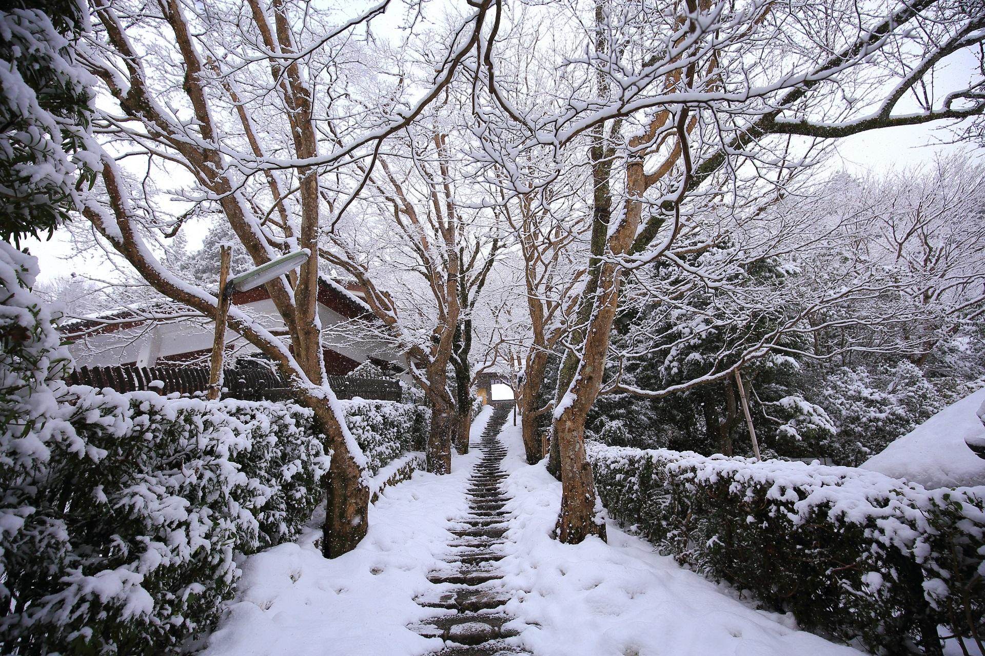 寂光院の雪の長い石段
