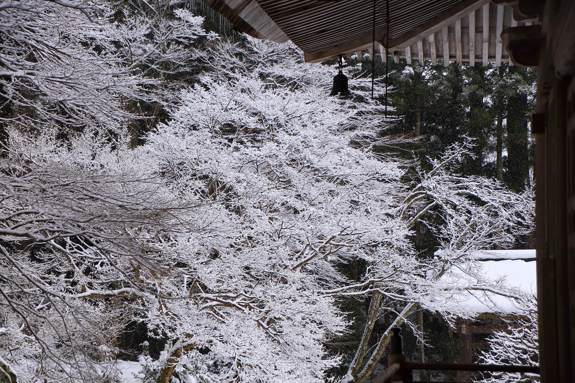 絵になる庇のある雪景色
