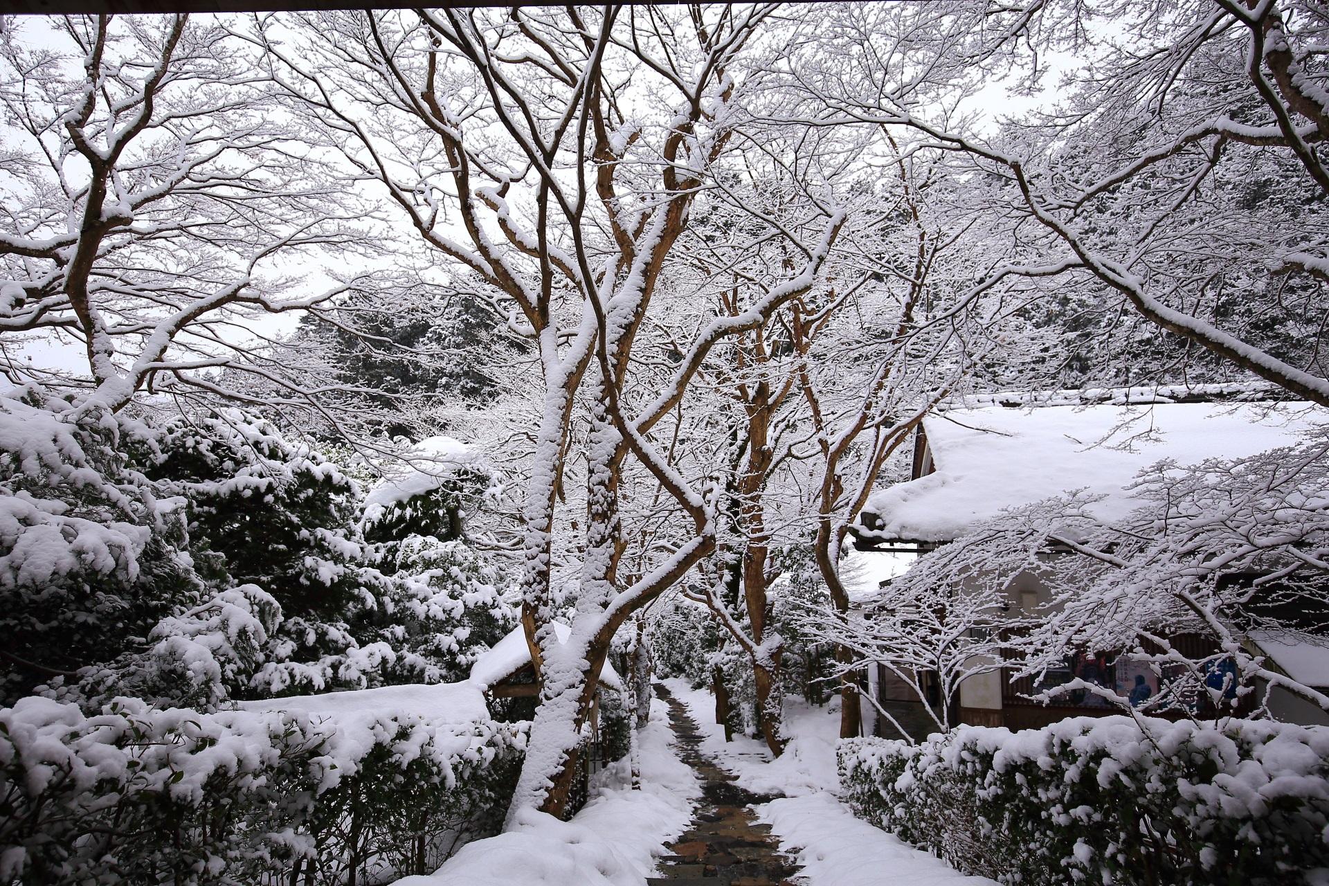 雪につつまれた寂光院の石段