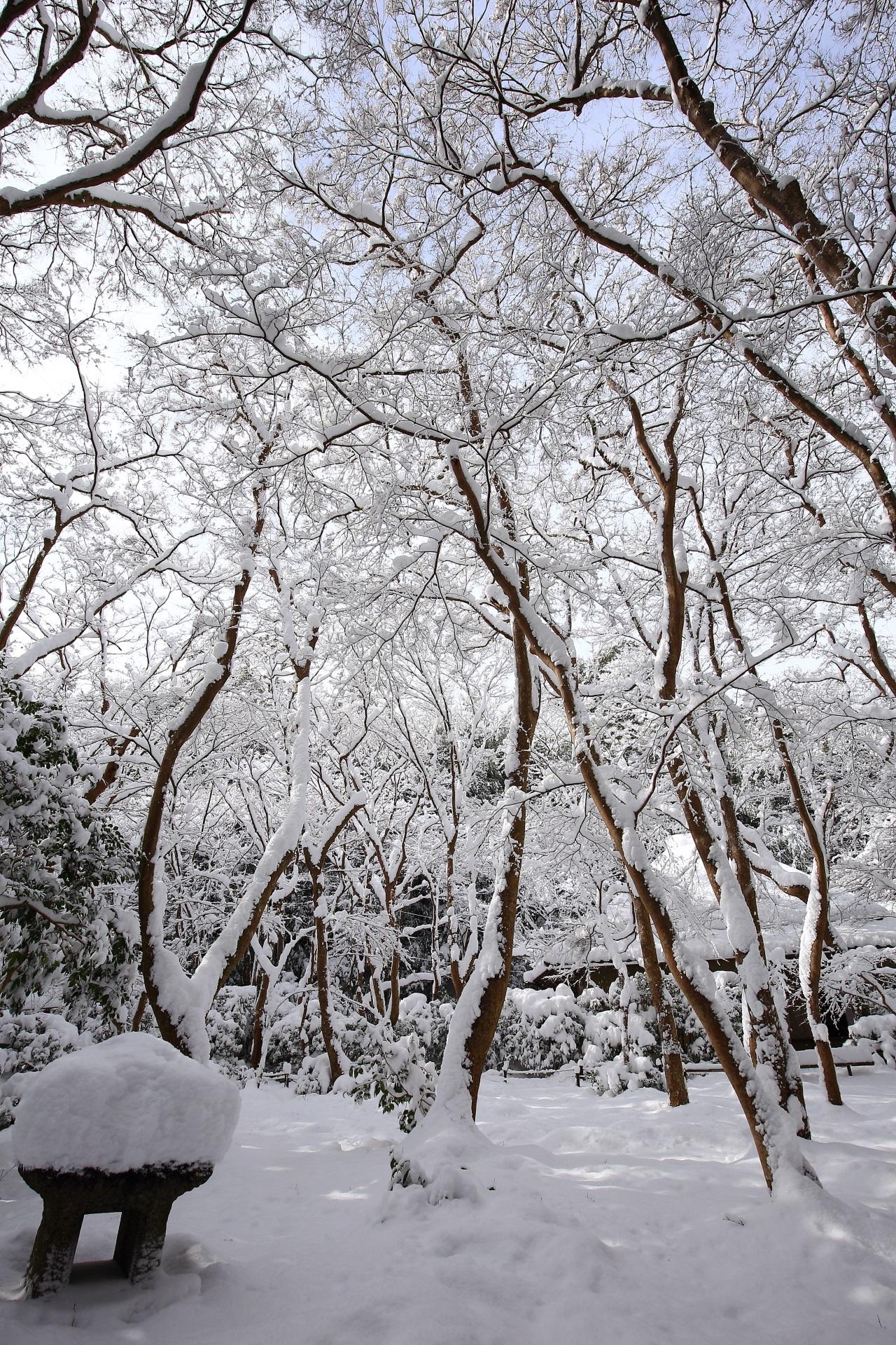 祇王寺の素晴らしすぎる雪景色