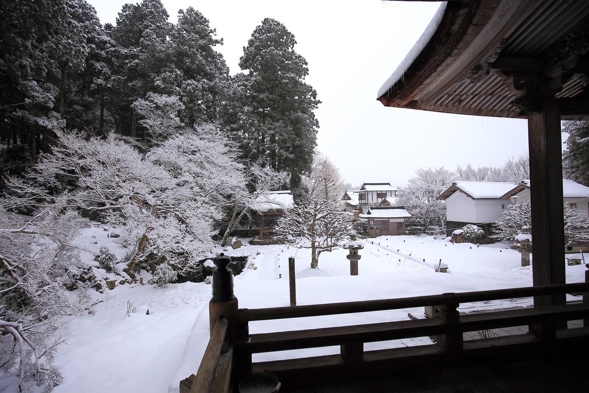 勝林院 高画質 雪 写真