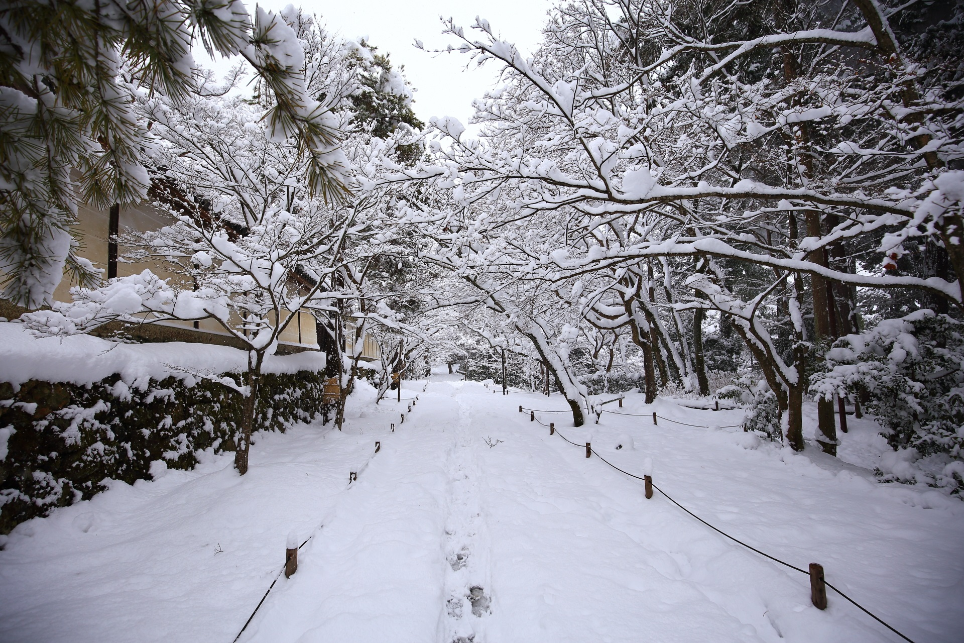 どこもかしこも雪景色の嵯峨の二尊院