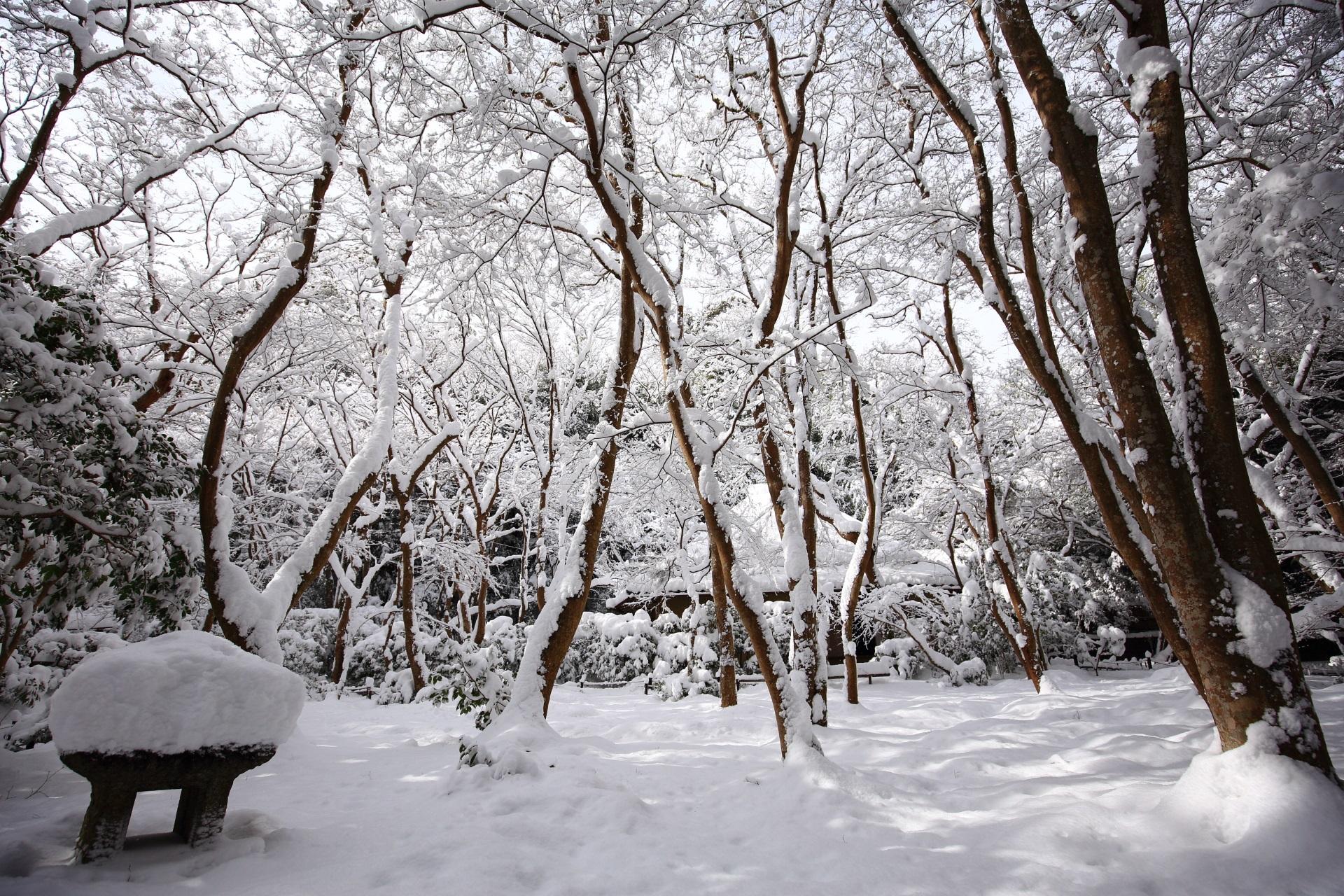 祇王寺 雪 冬の京都奥嵯峨の白い空間