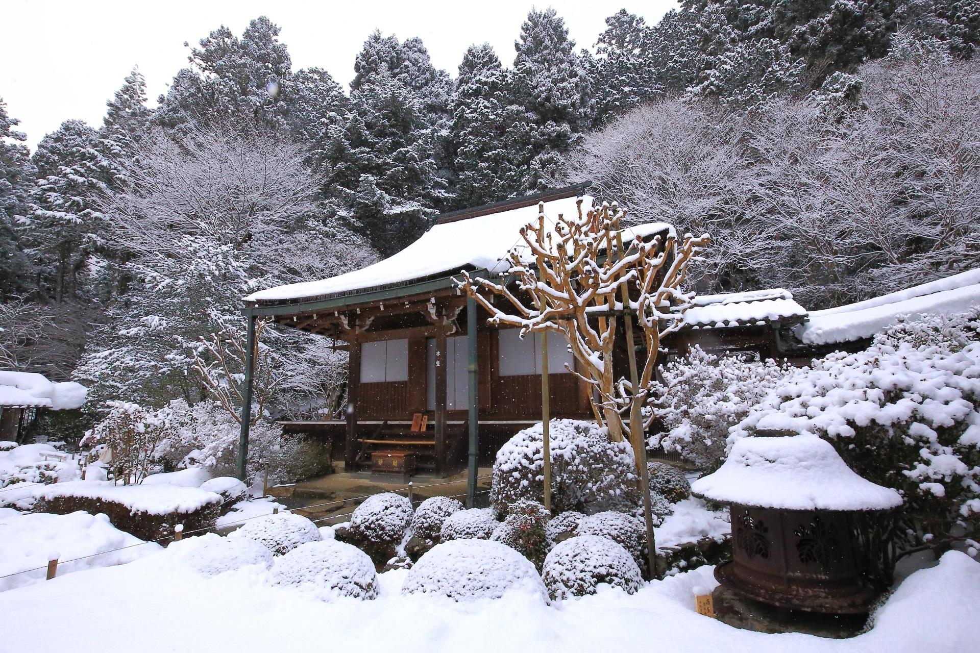寂光院 雪 京都大原の深く華やかな冬景色
