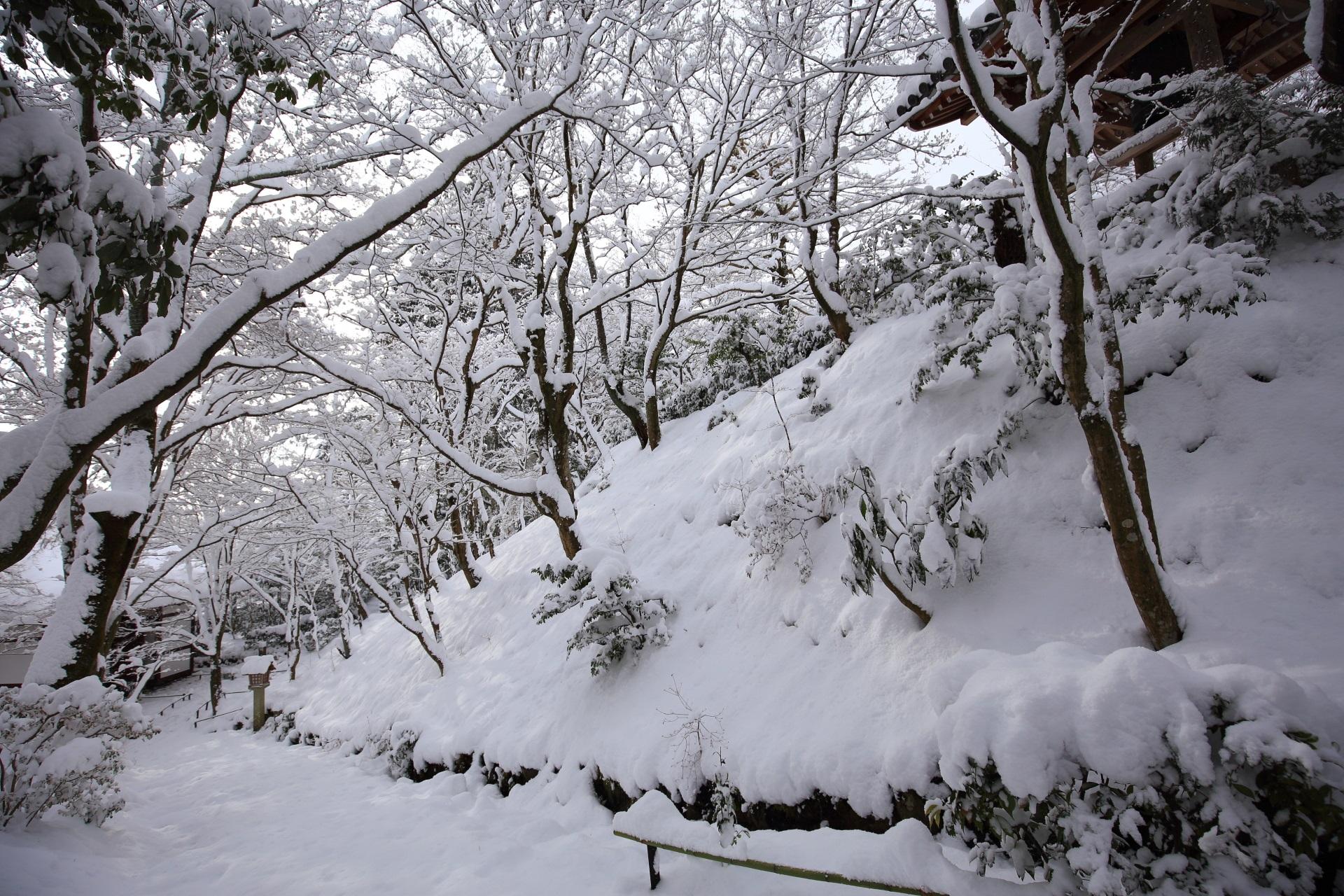 常寂光寺 雪景色 華やかな白銀の冬景色