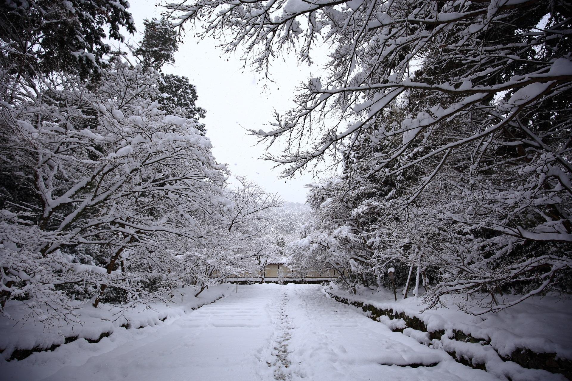 二尊院 雪 京都奥嵯峨の多彩な冬の情景
