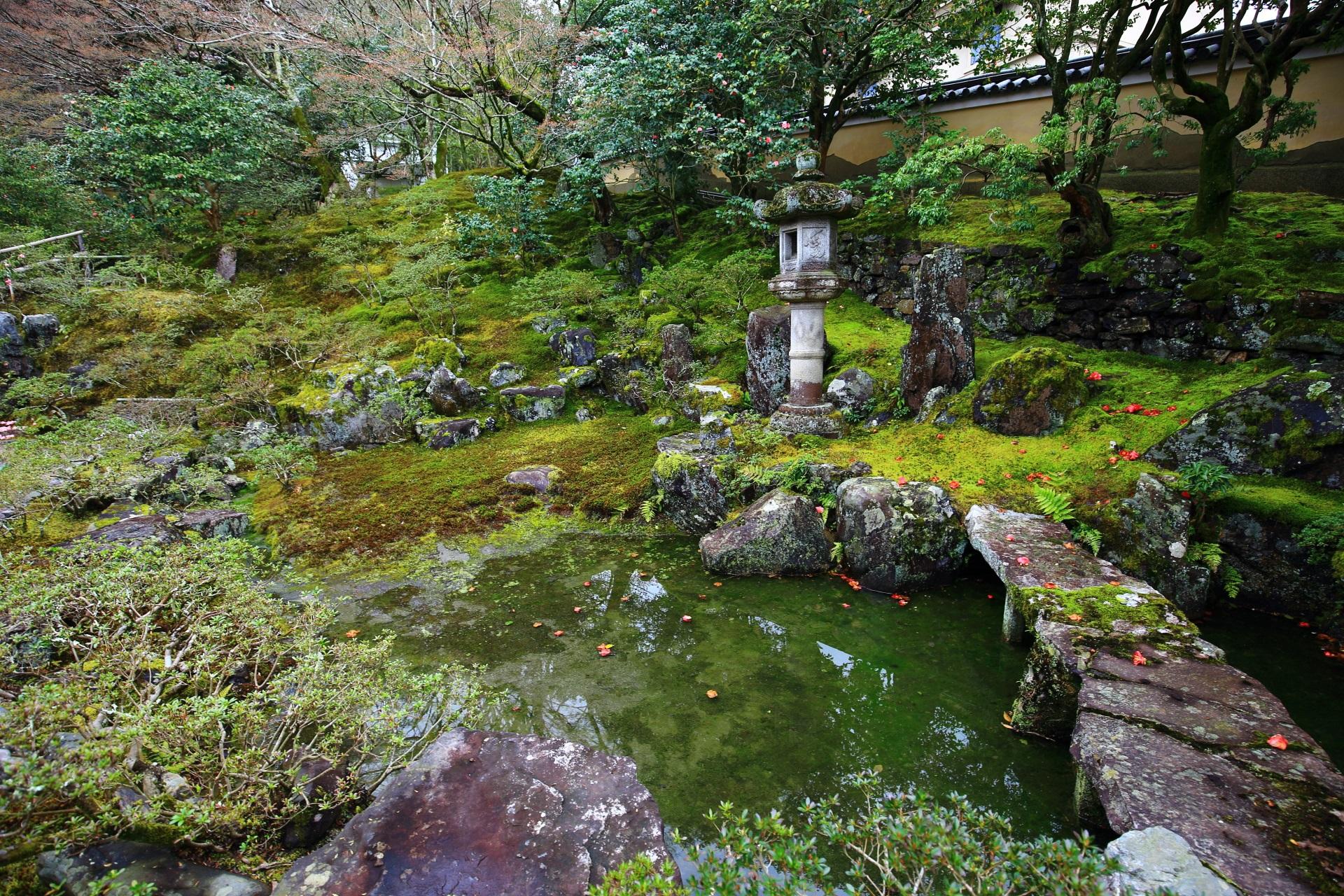 苔や岩の美しい霊鑑寺の池泉式の庭園