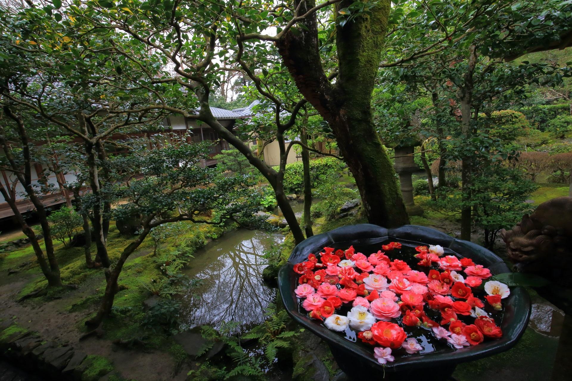 法然院の方丈庭園の水鉢
