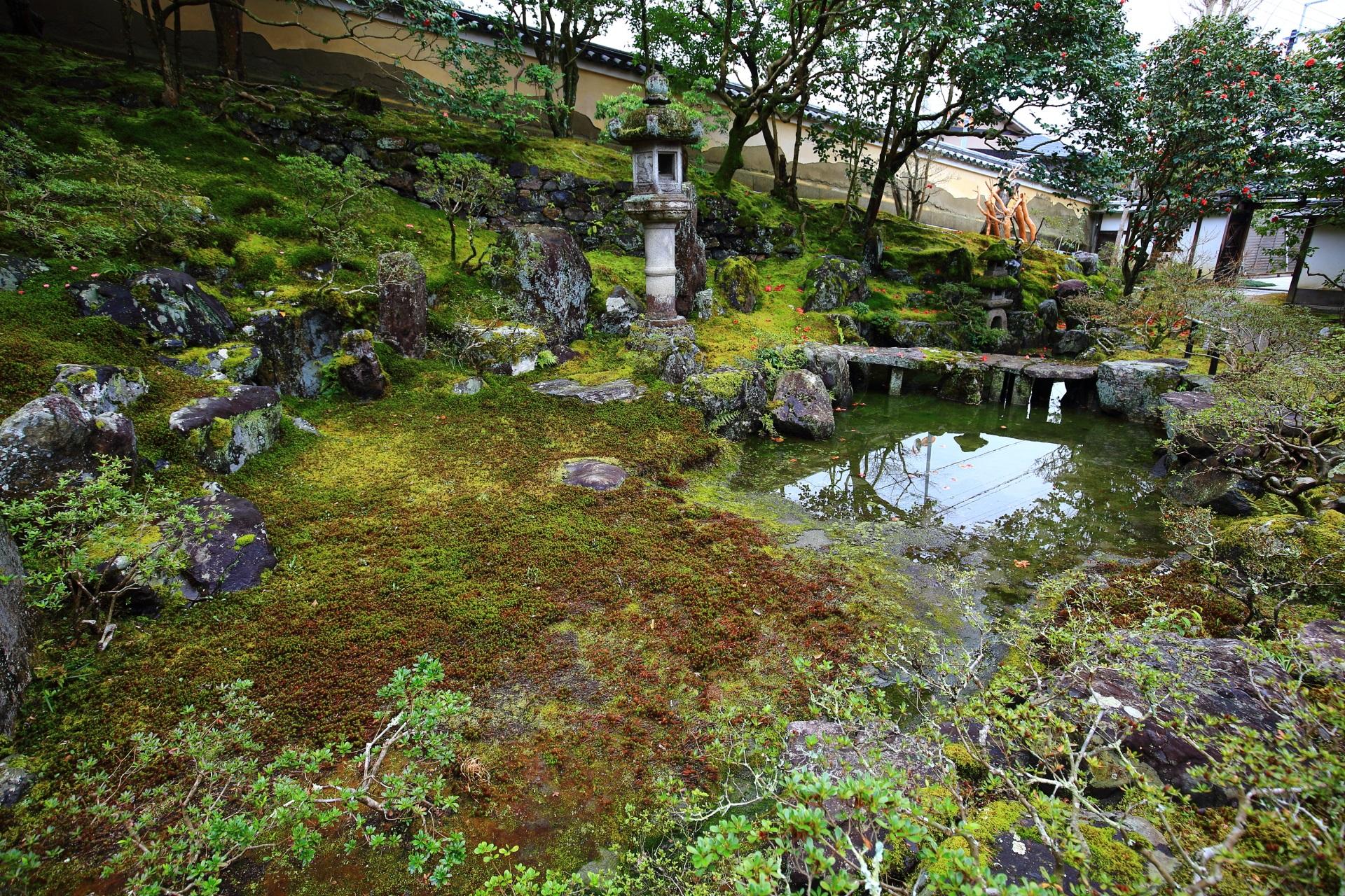 落ち着いた深みのある水の庭園