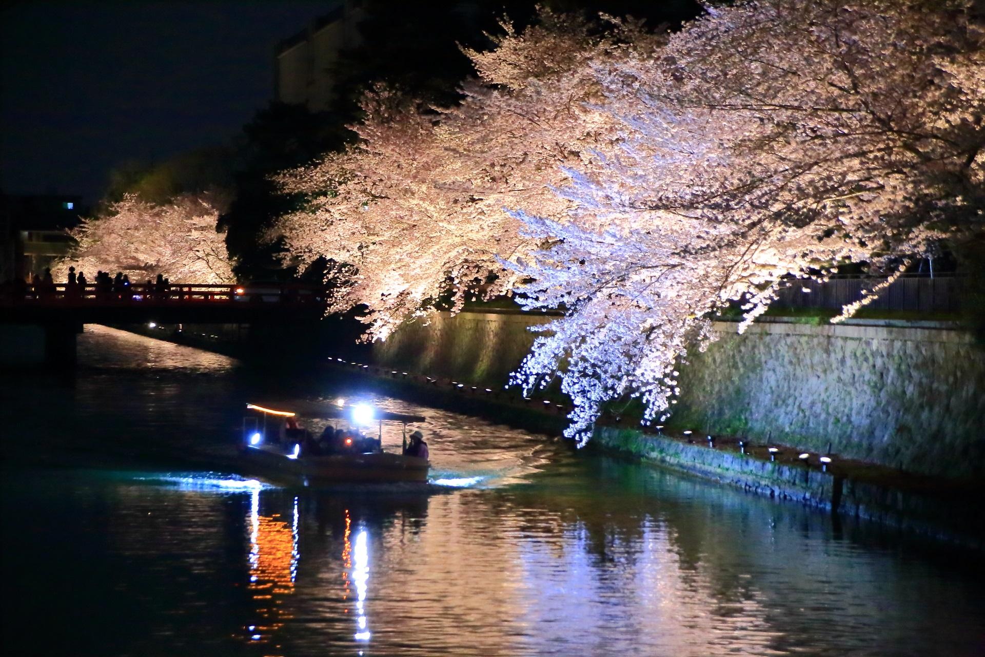 夜桜の下を通る十石船