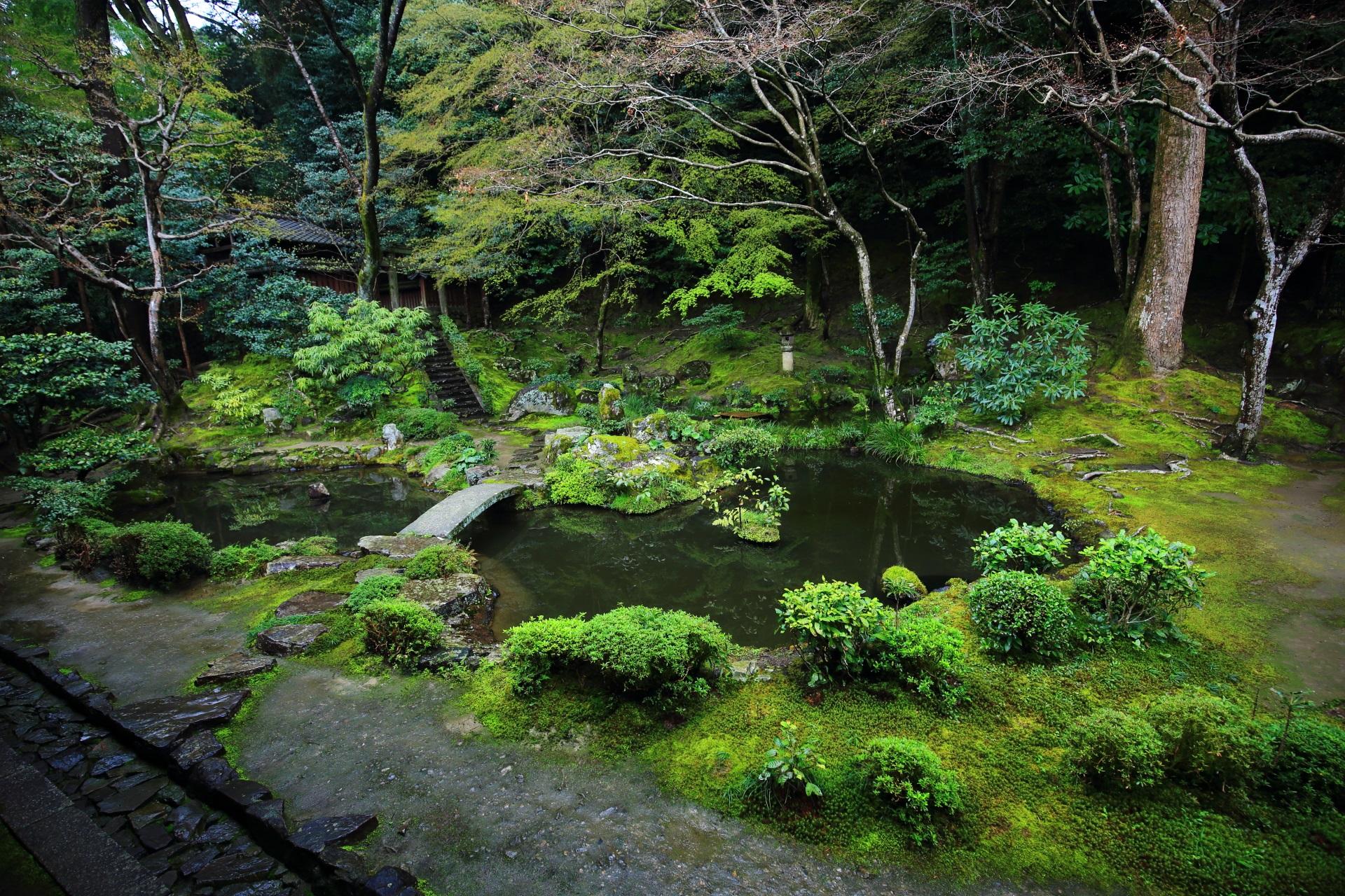 緑の素晴らしい池泉式の庭園である法然院の浄土庭園