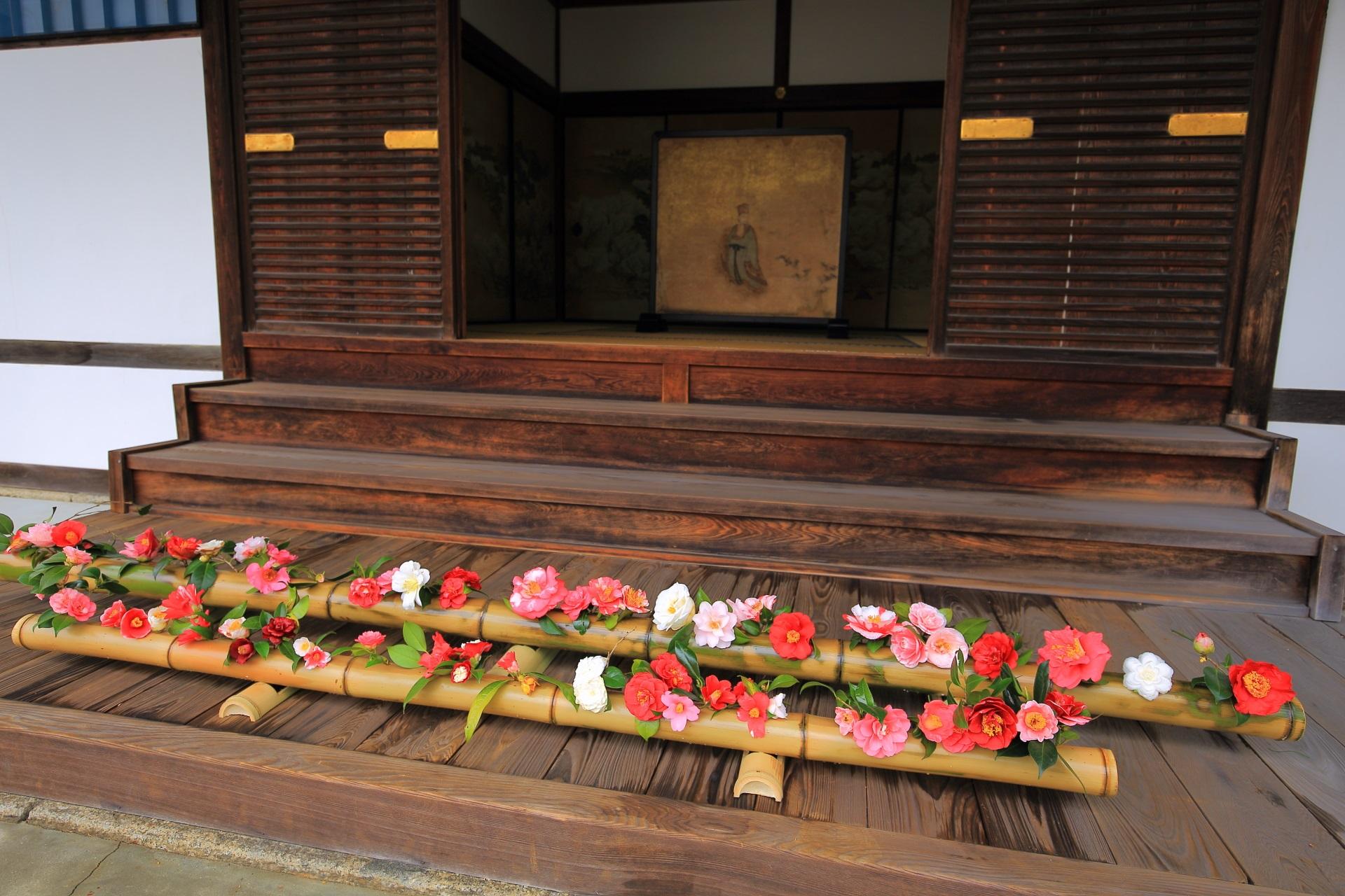 霊鑑寺の大玄関に飾られる椿の花