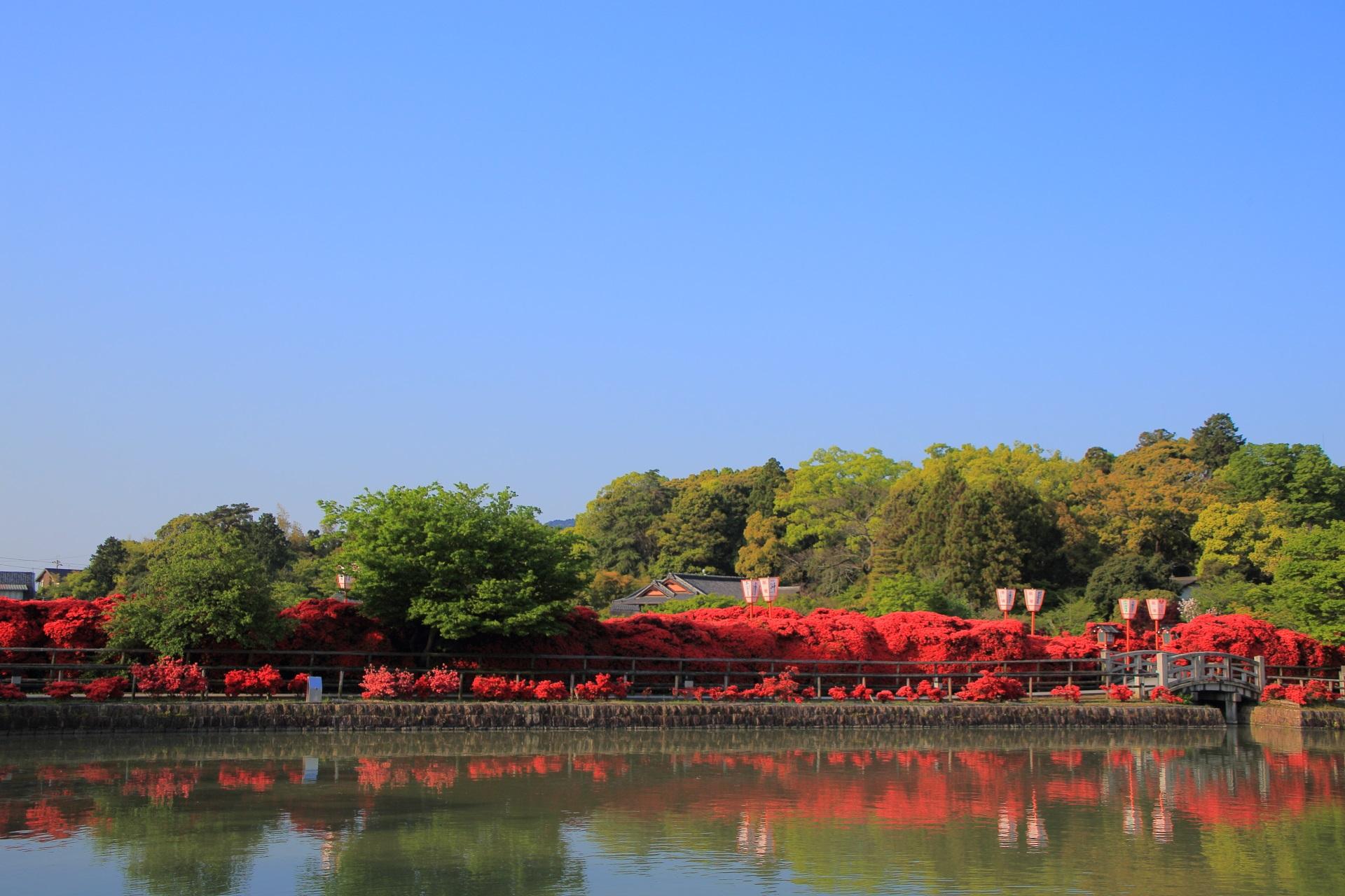 見事な青空の下で赤い橋となる八条が池の水上橋