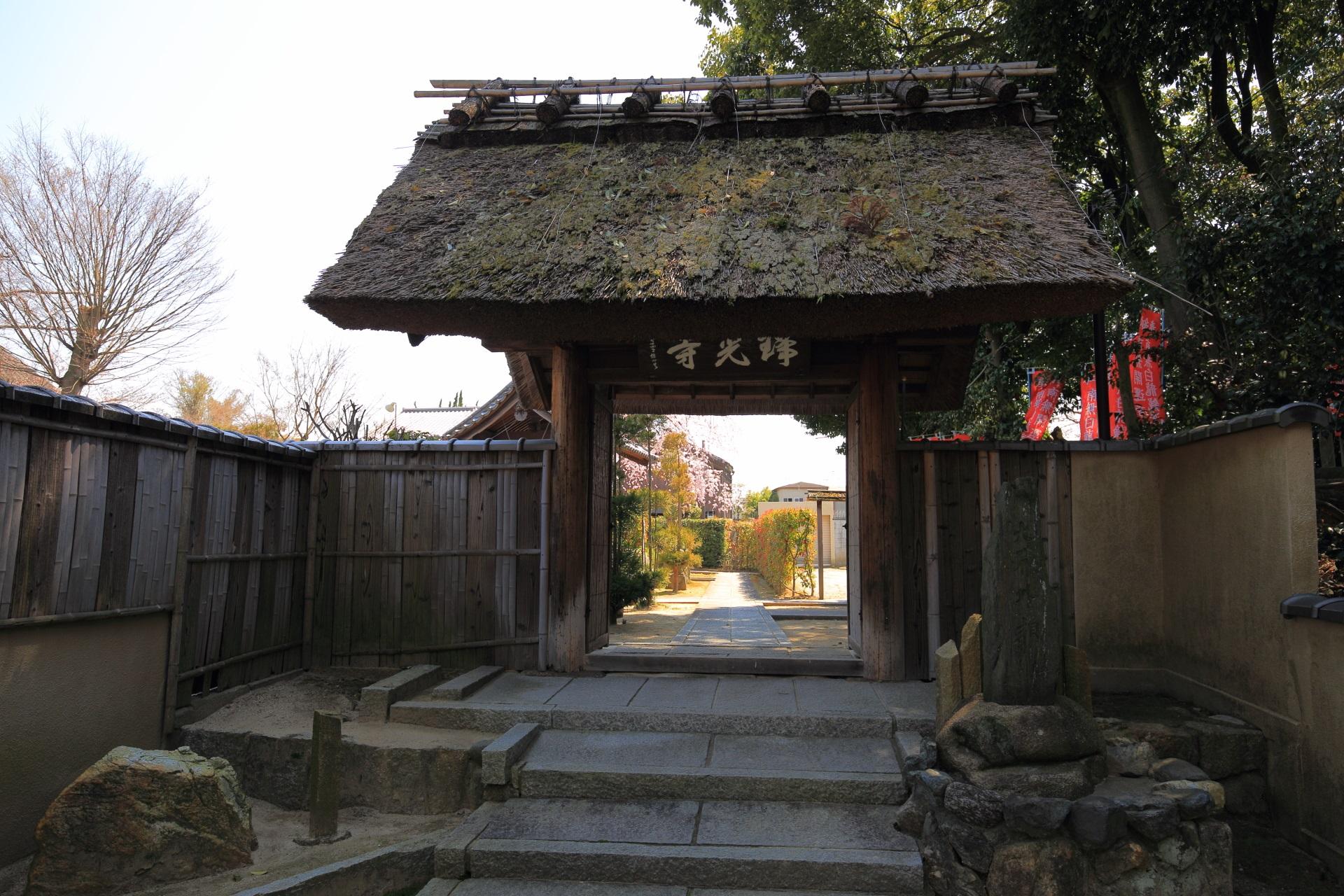 奥に桜が見える瑞光寺の山門
