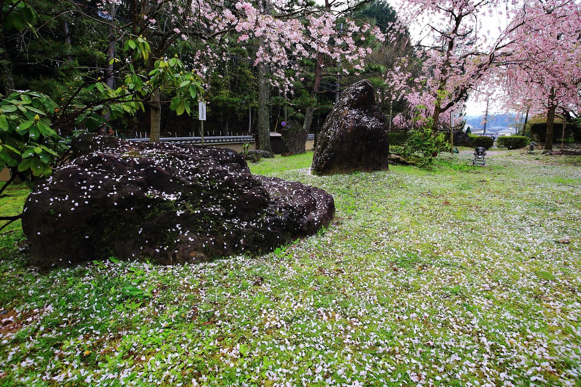 緑とピンクの華やかな春の彩り