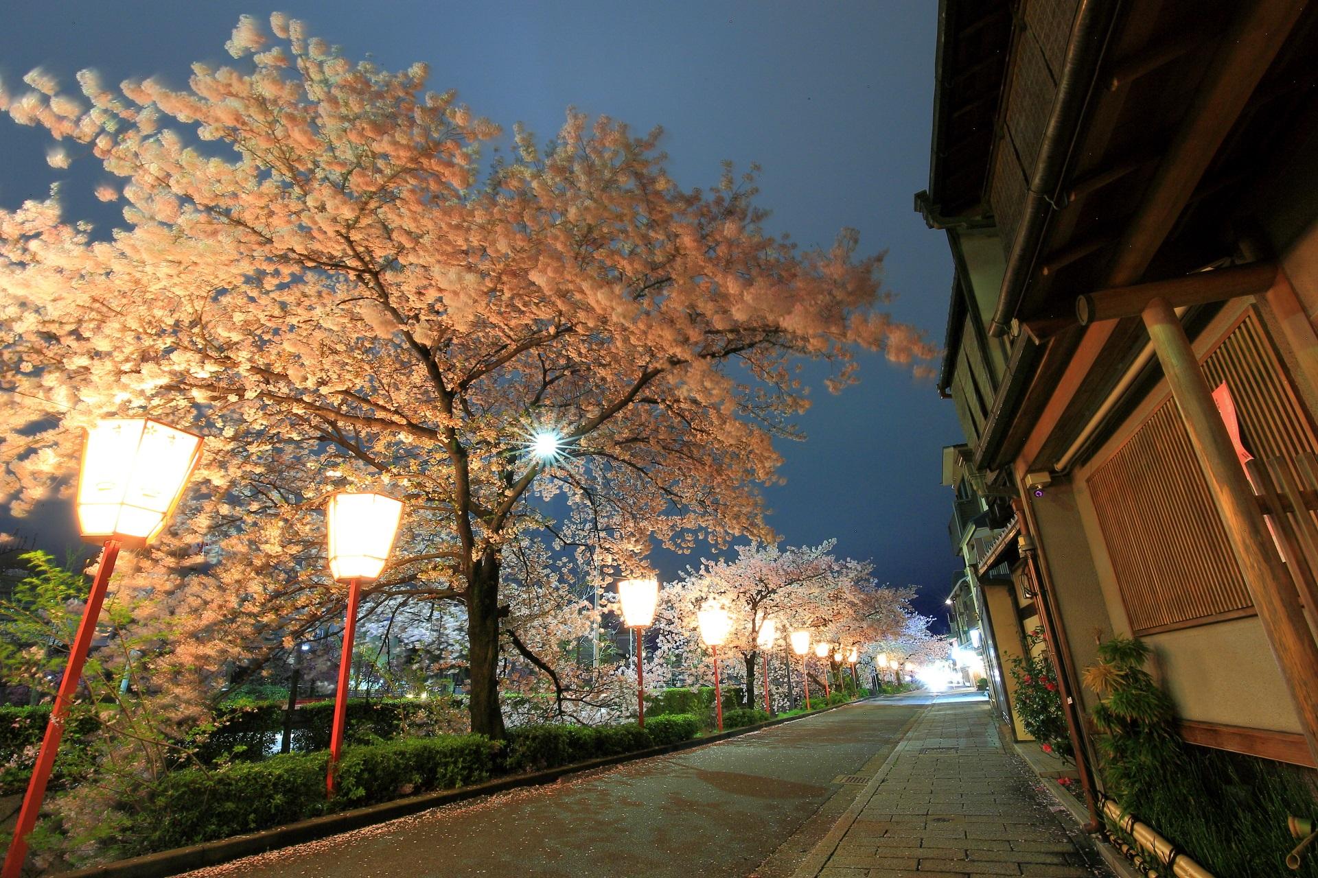 舞妓さんの街として知られる宮川町