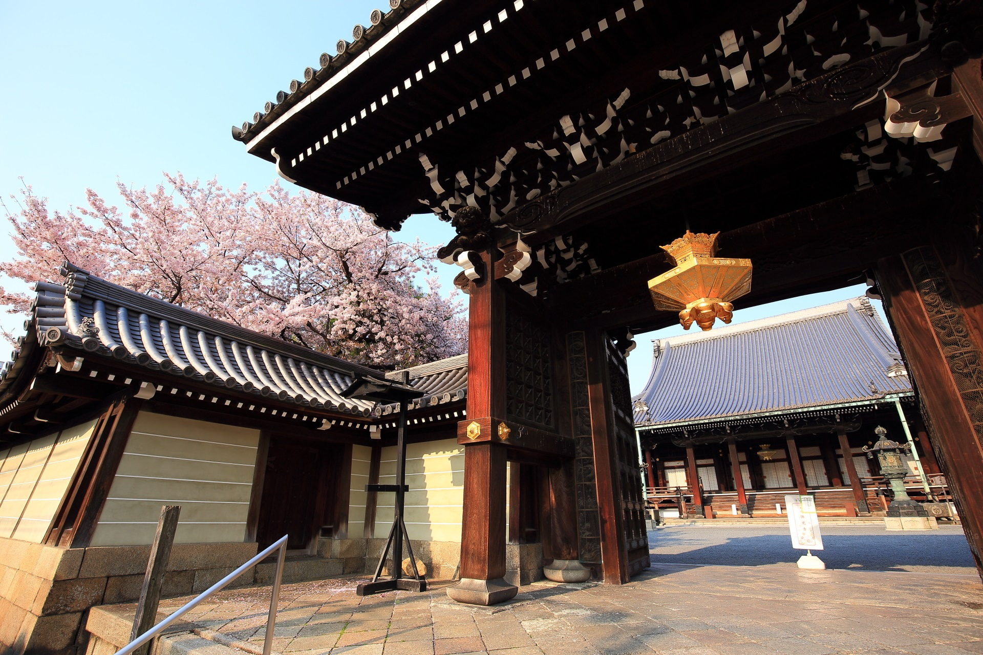 仏光寺の御影堂門と桜