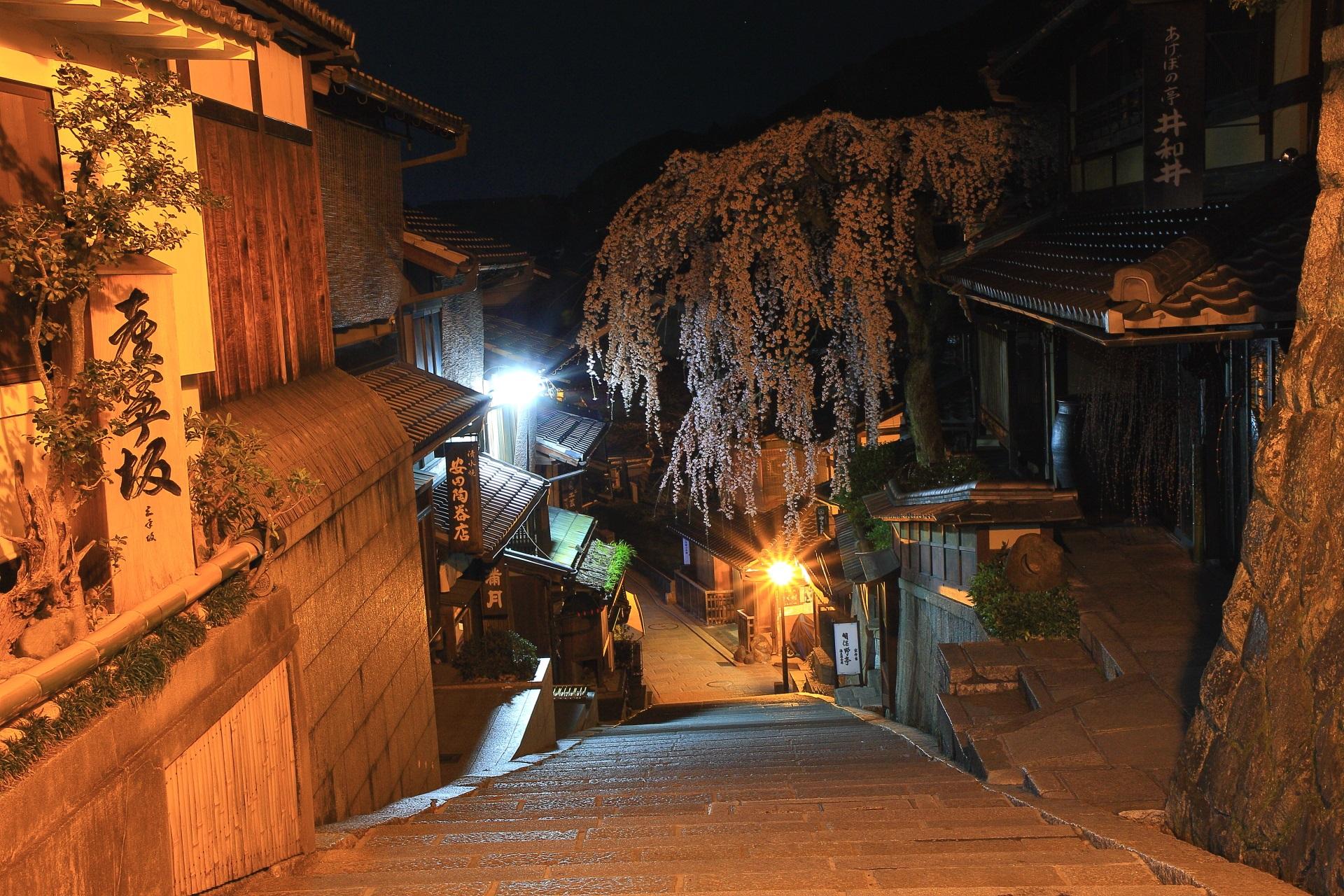 産寧坂の上から眺めた非常に絵になる春の夜桜の風景