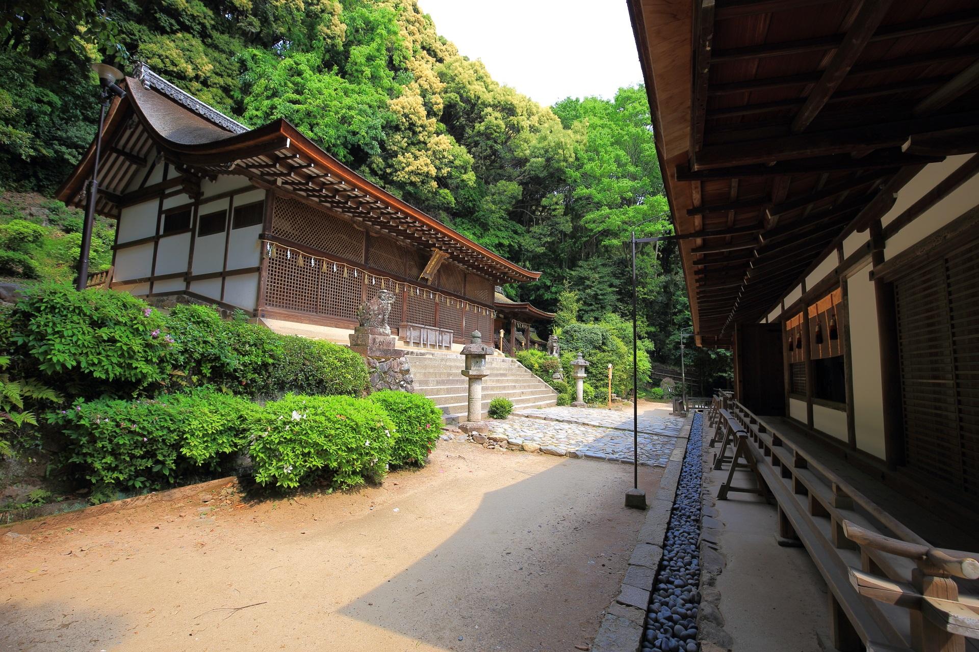 世界遺産の宇治上神社の本殿と拝殿