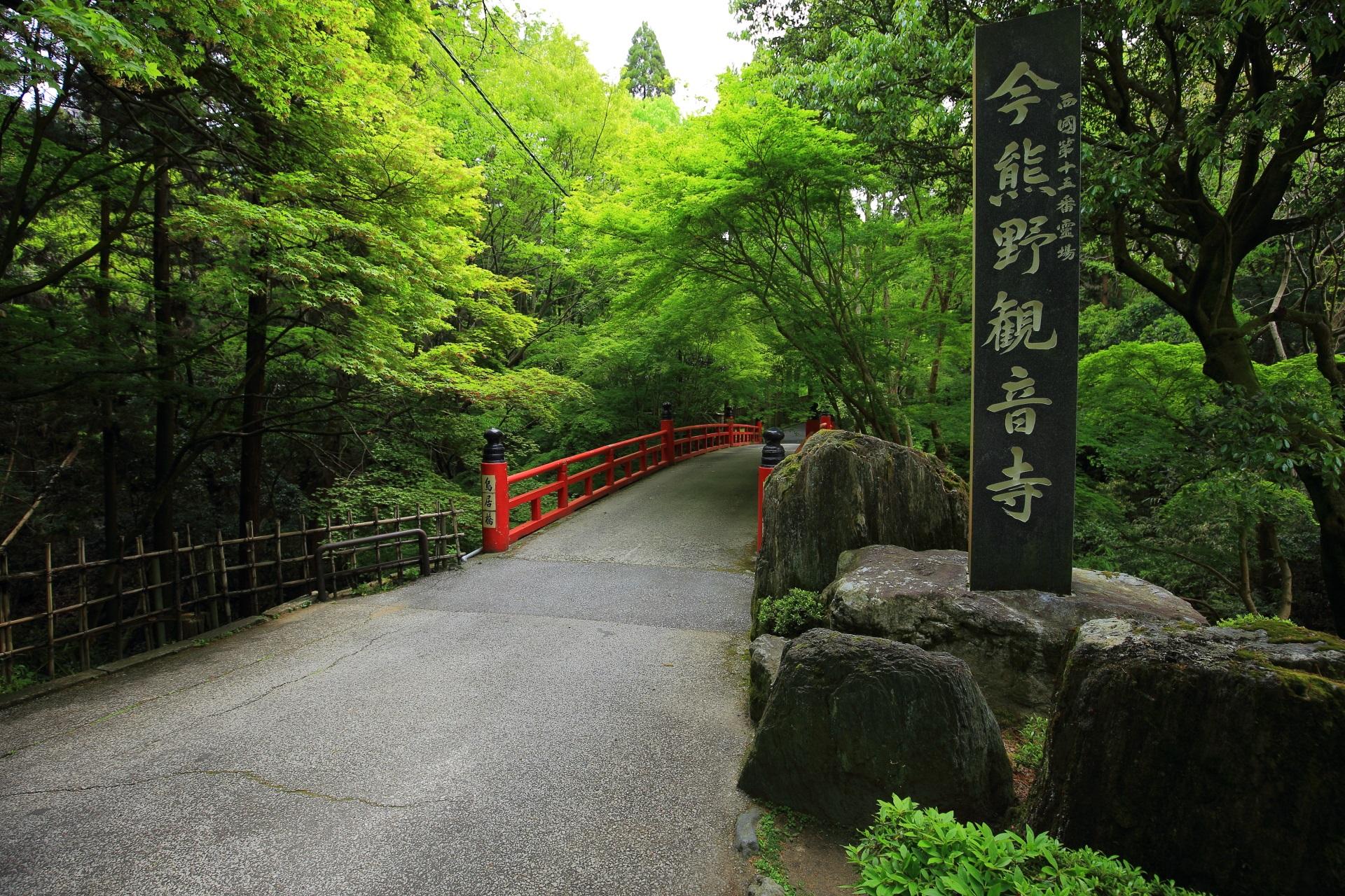今熊野観音寺の鳥居橋と新緑