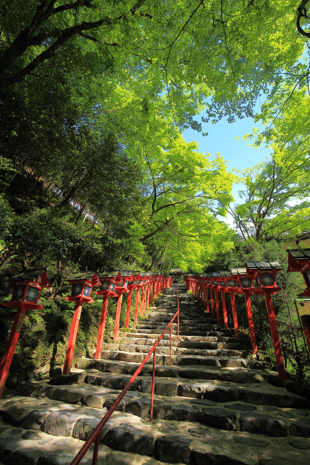 Kyoto Kifune-jinja Shrine fresh green