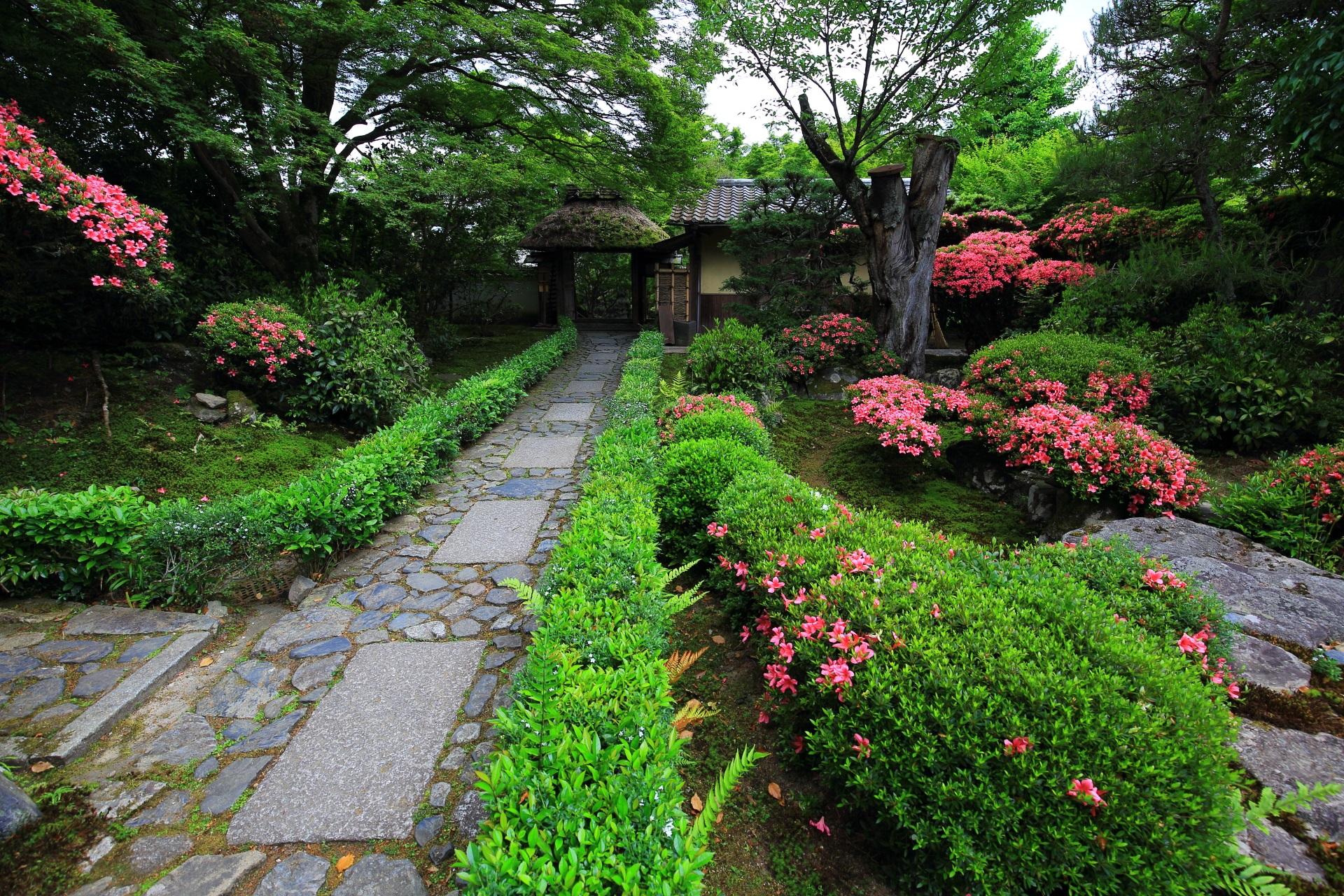 春の彩りにつつまれた安楽寺の風情ある石の参道と山門