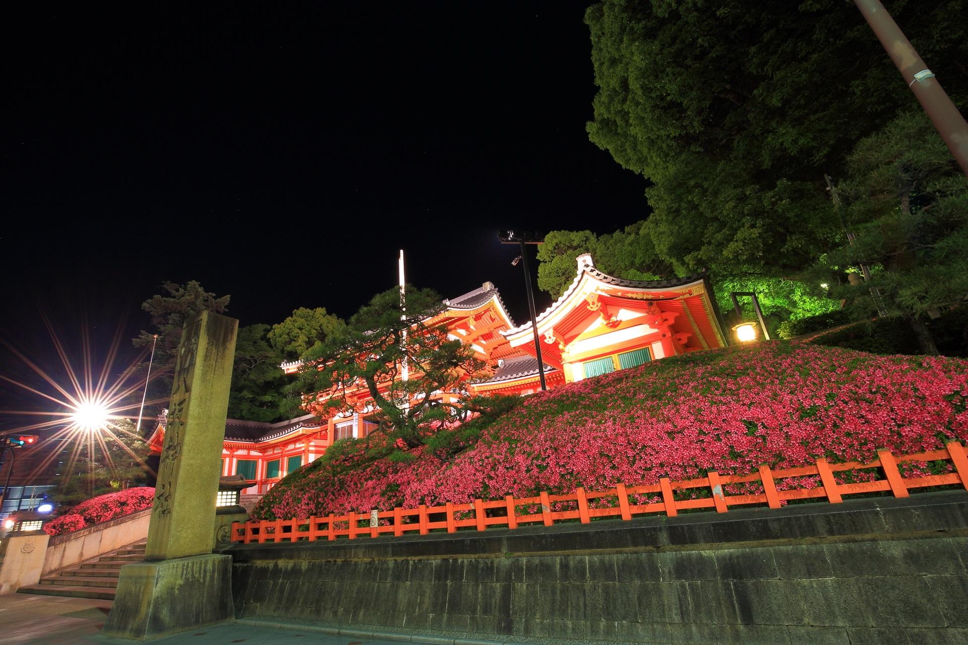 高画質 写真 八坂神社 サツキ