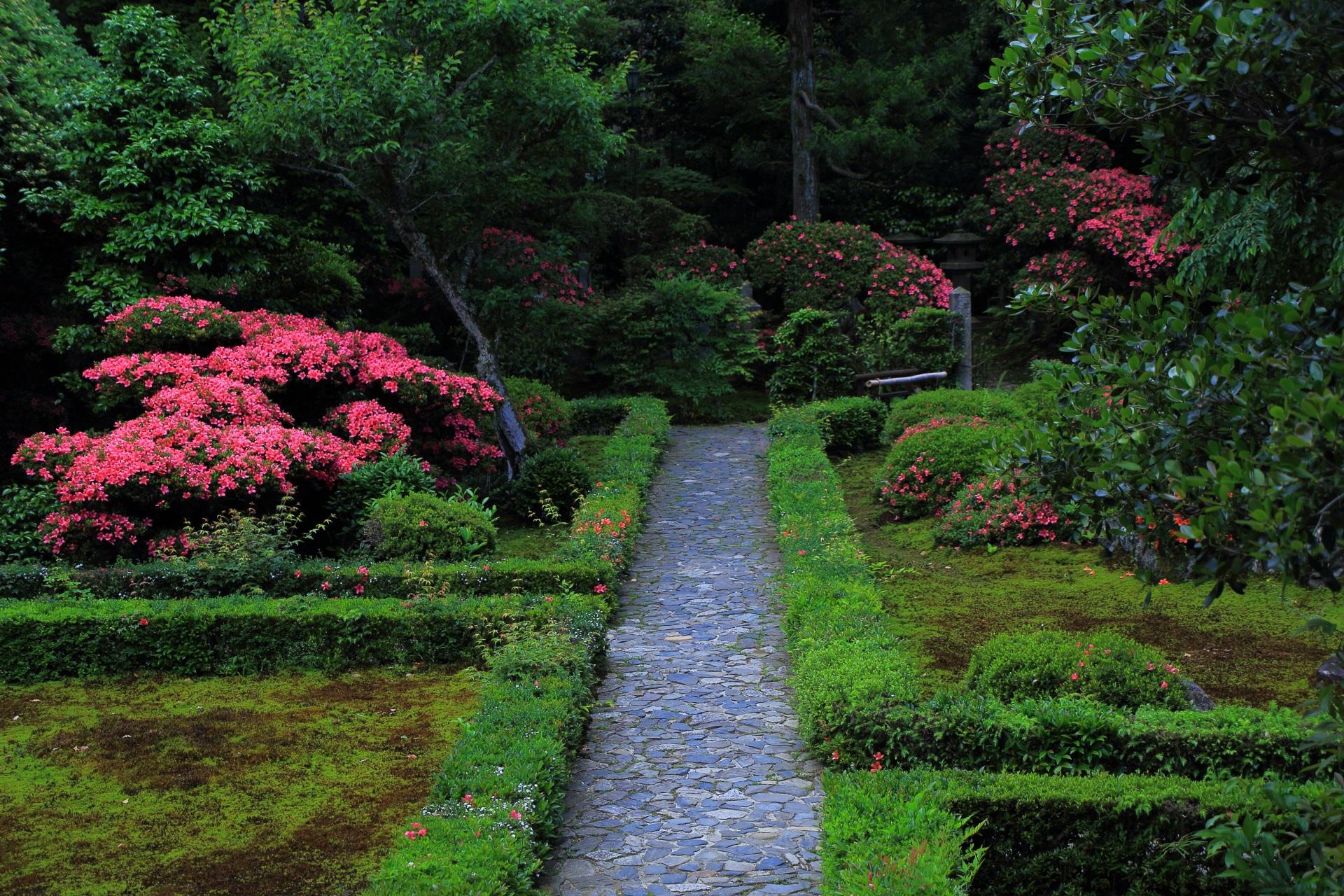 華やかさや鮮やかさの中にも風情が感じられる春の安楽寺