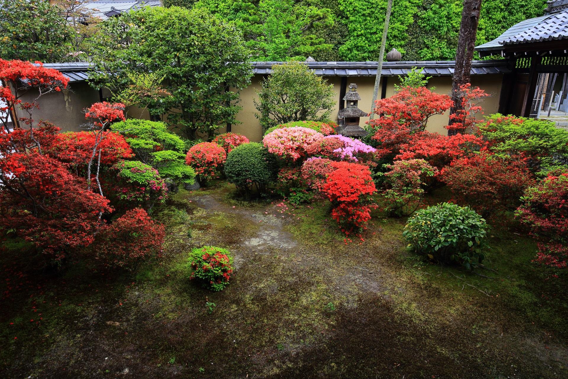 正伝永源院の方丈東側のツツジの庭園
