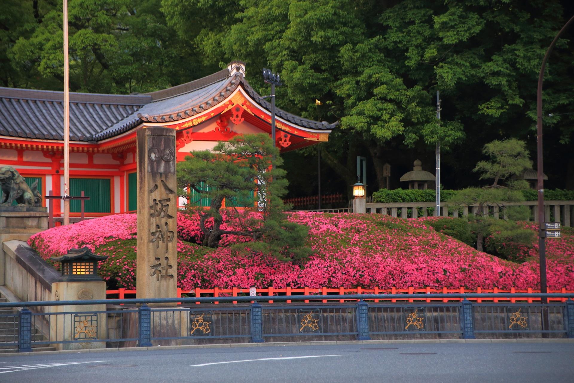 一面サツキに彩られる八坂神社の西楼門の南側