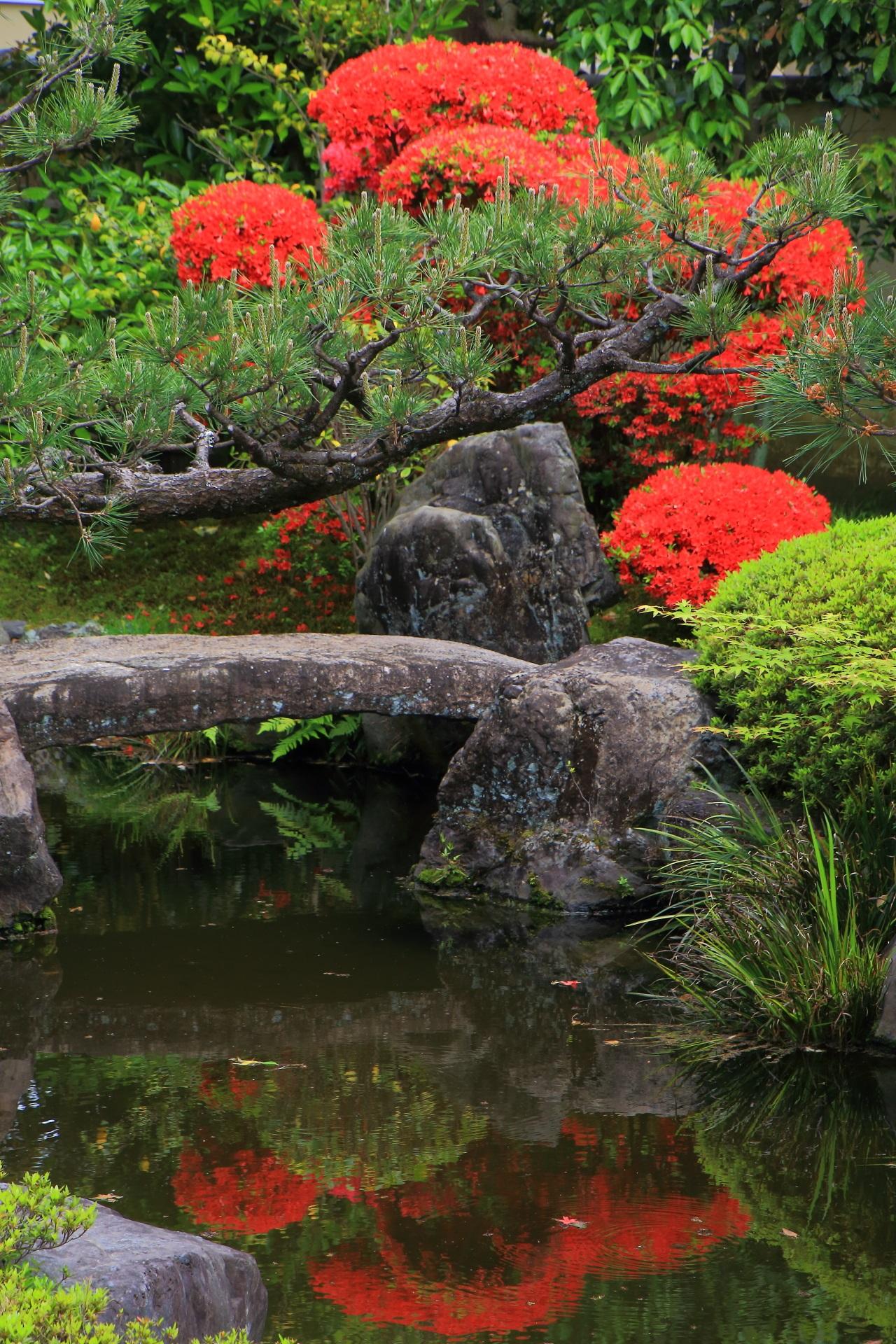 正伝永源院のキリシマツツジの赤い水鏡